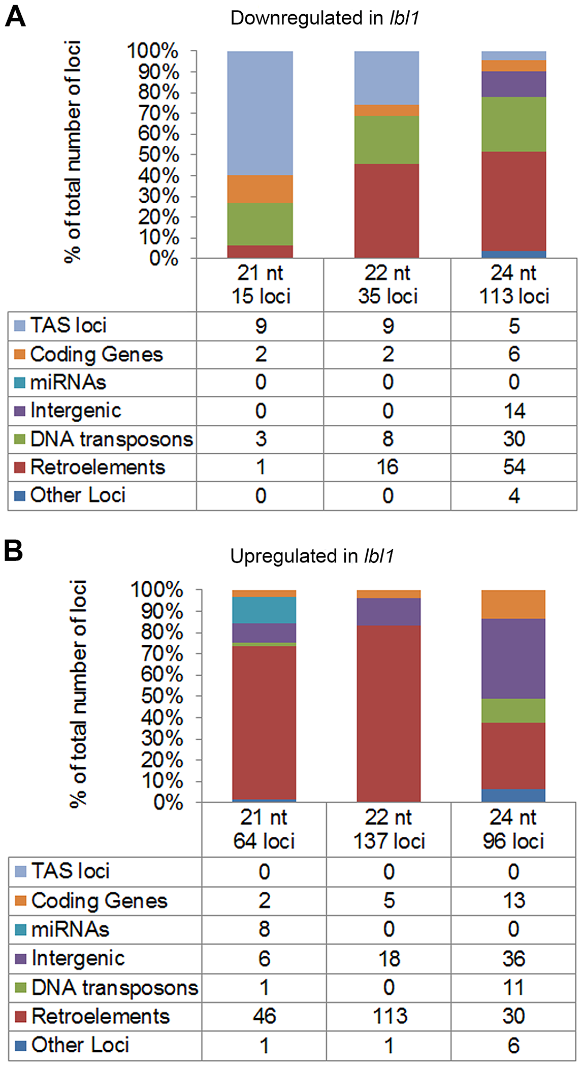 LBL1 affects the accumulation of 21-, 22-, and 24-nt small RNAs.