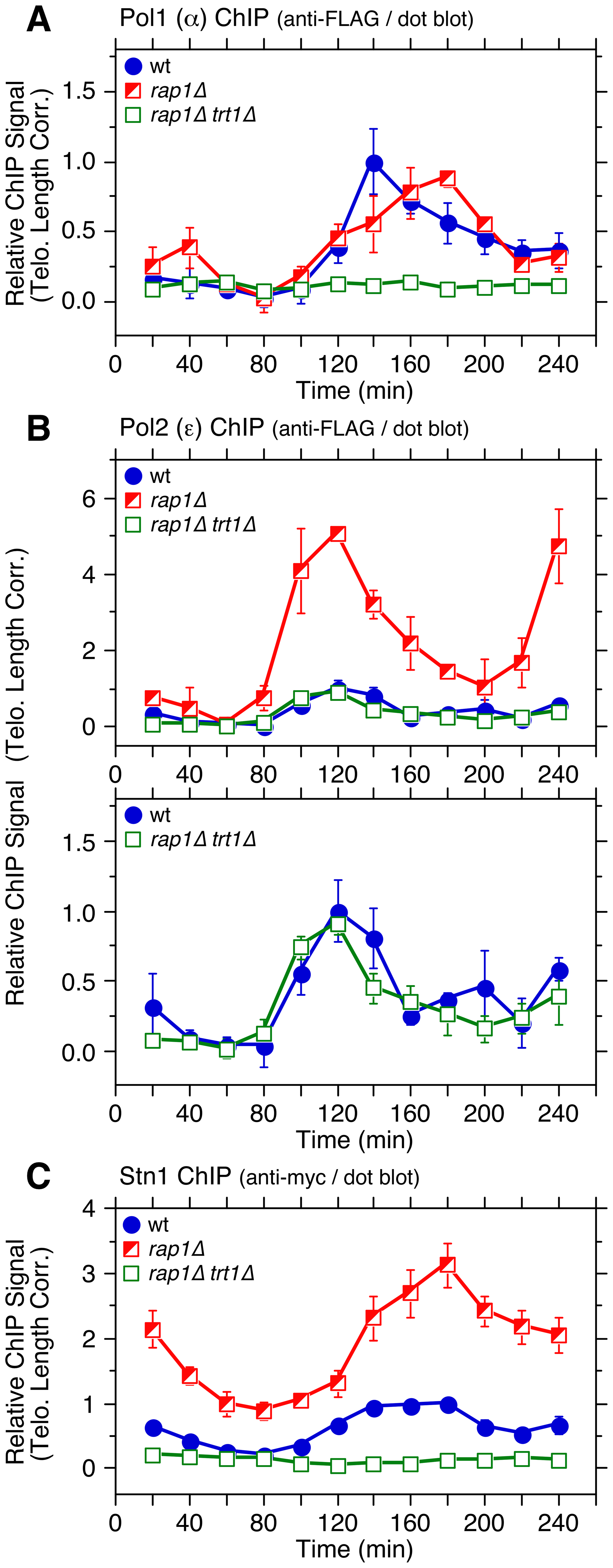 Cell cycle ChIP assays to monitor association of DNA polymerases and Stn1 with telomeres in <i>rap1Δ trt1Δ</i> cells.