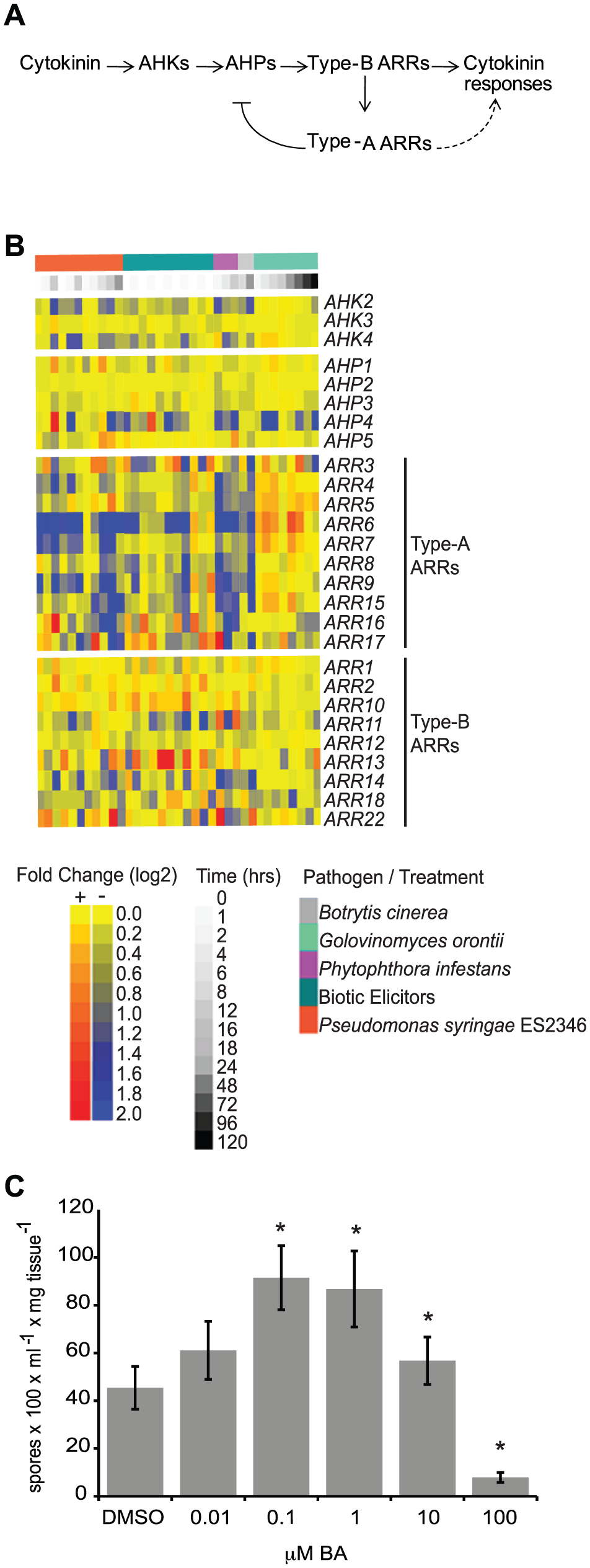 Cytokinin and two-component elements play a role in plant immunity.