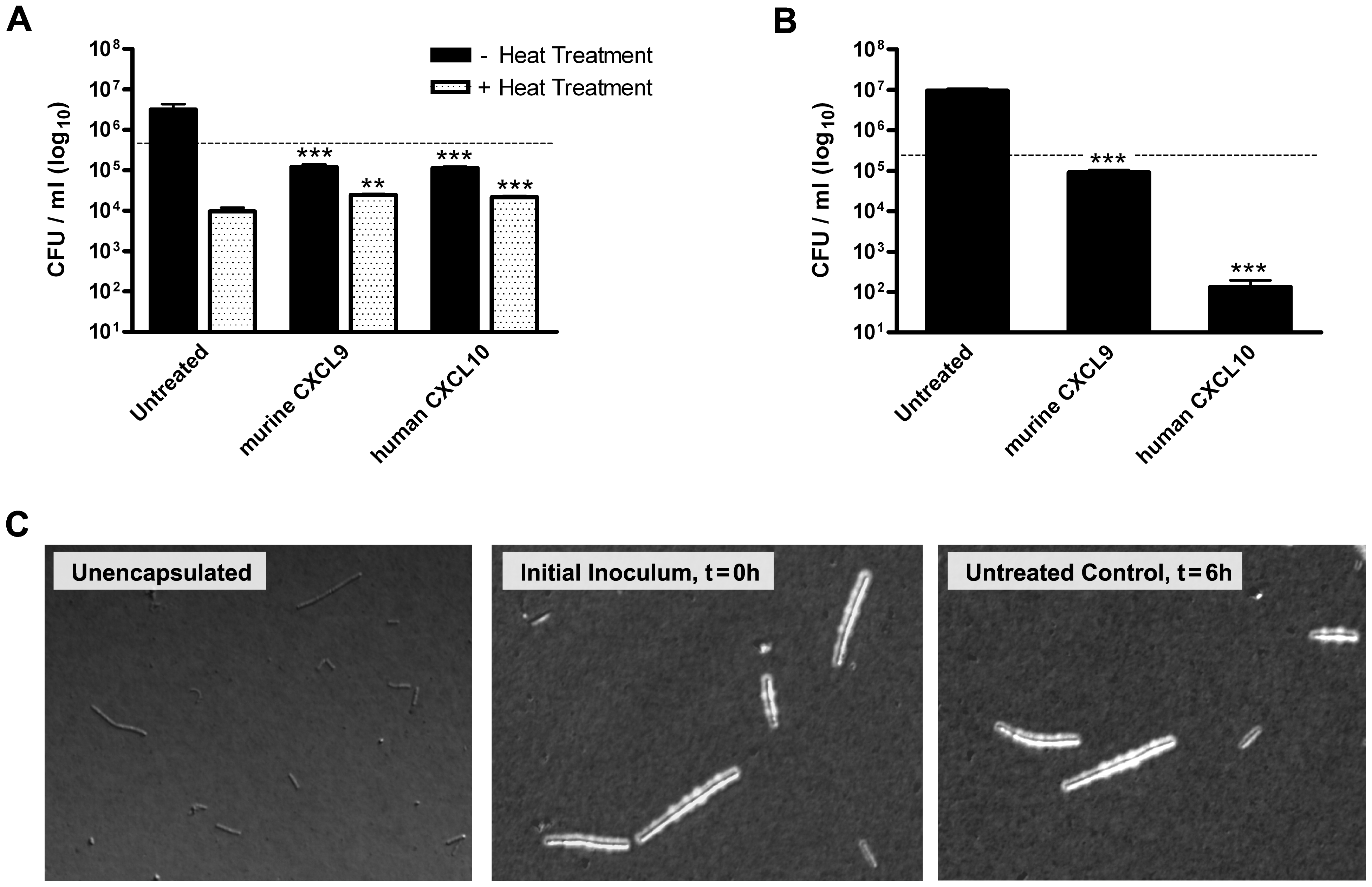 Chemokine-mediated antimicrobial activity against <i>B. anthracis</i> Ames strain spores and encapsulated bacilli.