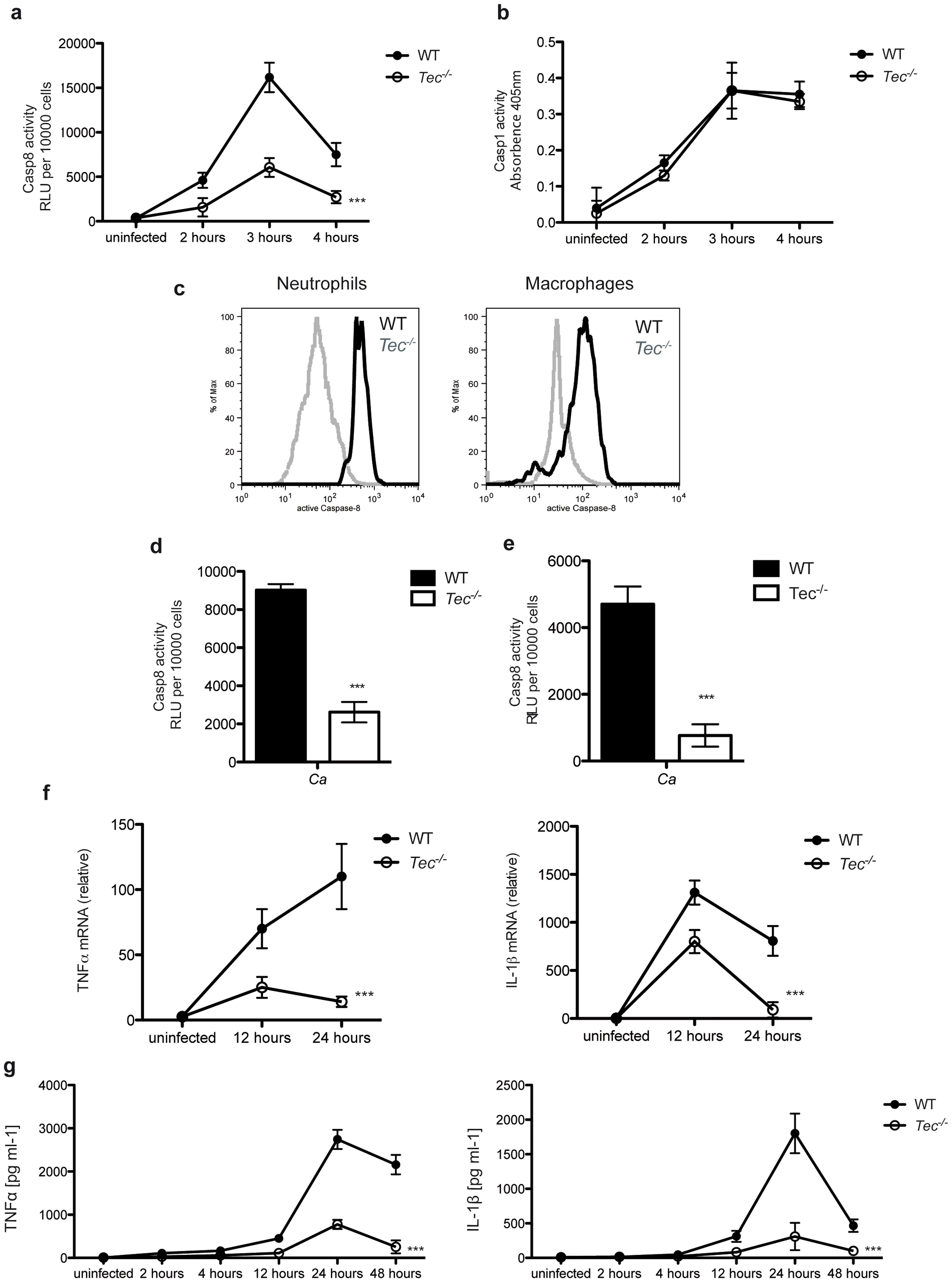 Tec regulates fungal virulence <i>in vivo</i>.