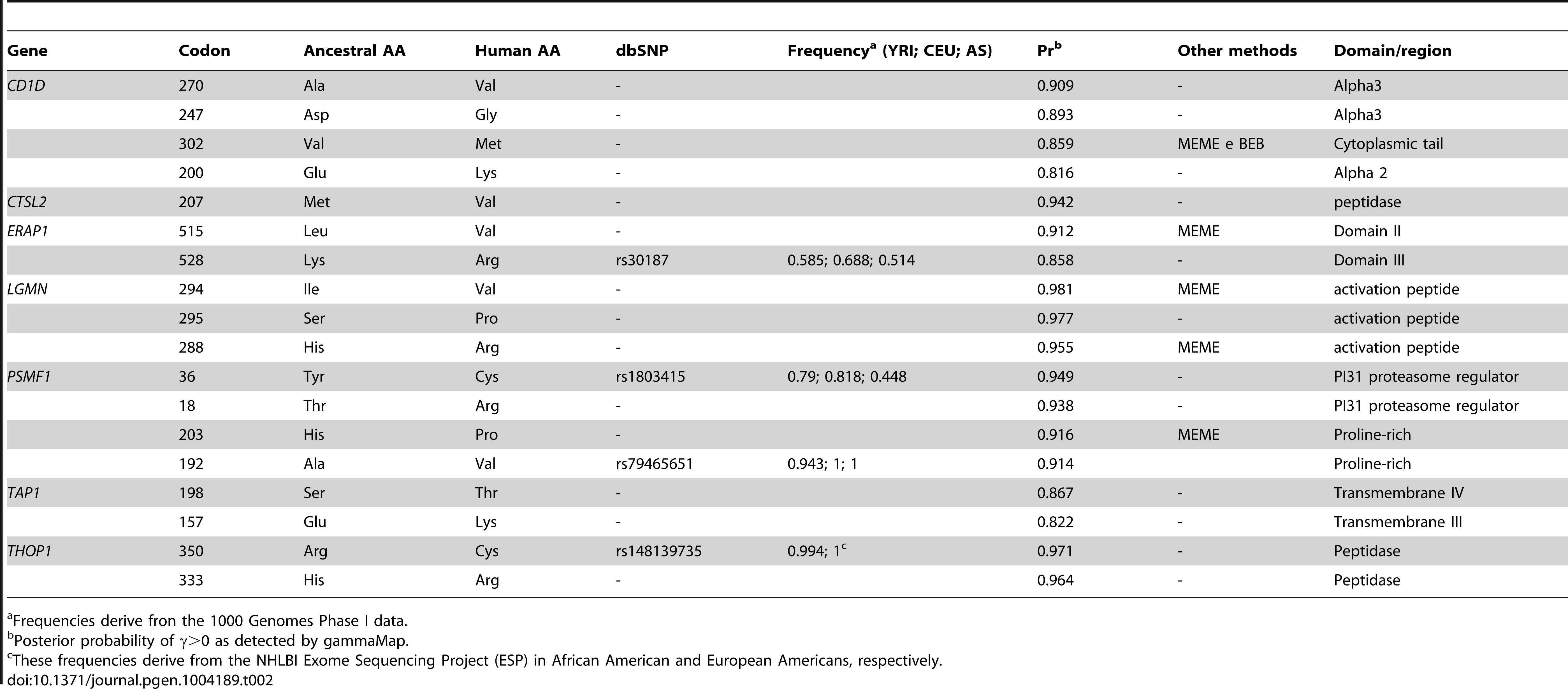 Positively selected sites in the human lineage.