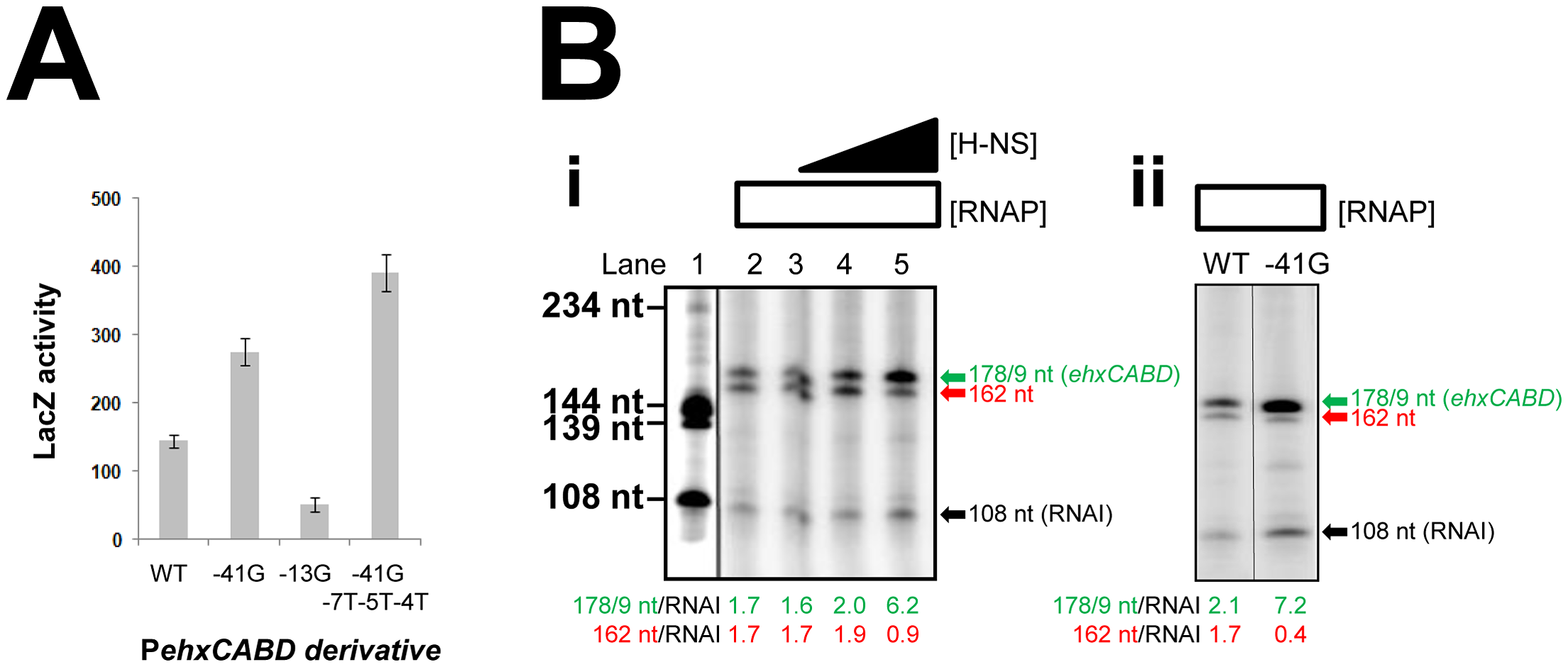 Transcription from P<i>ehxCABD</i> is inhibited by overlapping RNA polymerase binding sites.