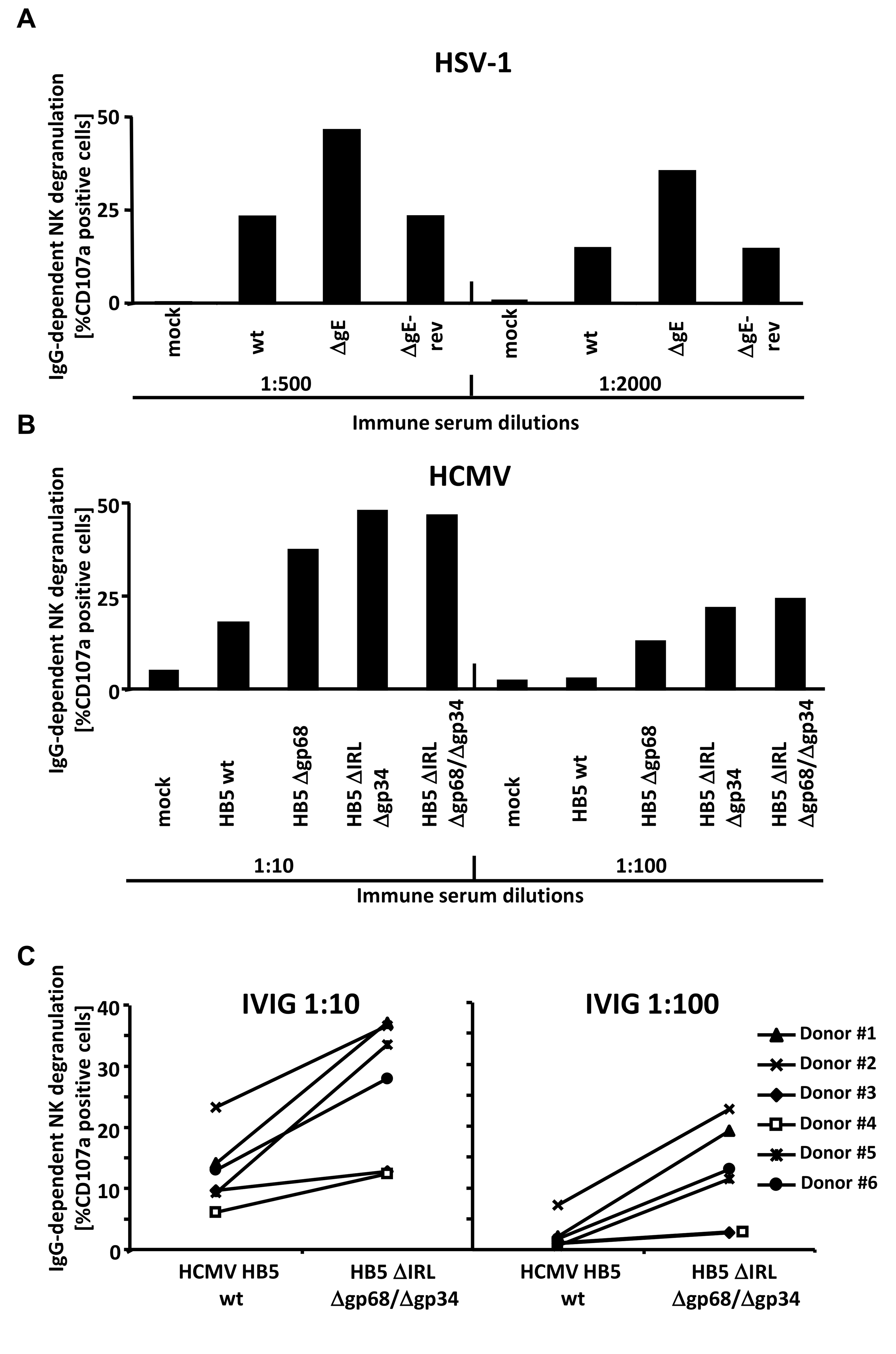 The presence of the vFcγRs on the surface of infected cells inhibits antibody dependent NK cell degranulation.