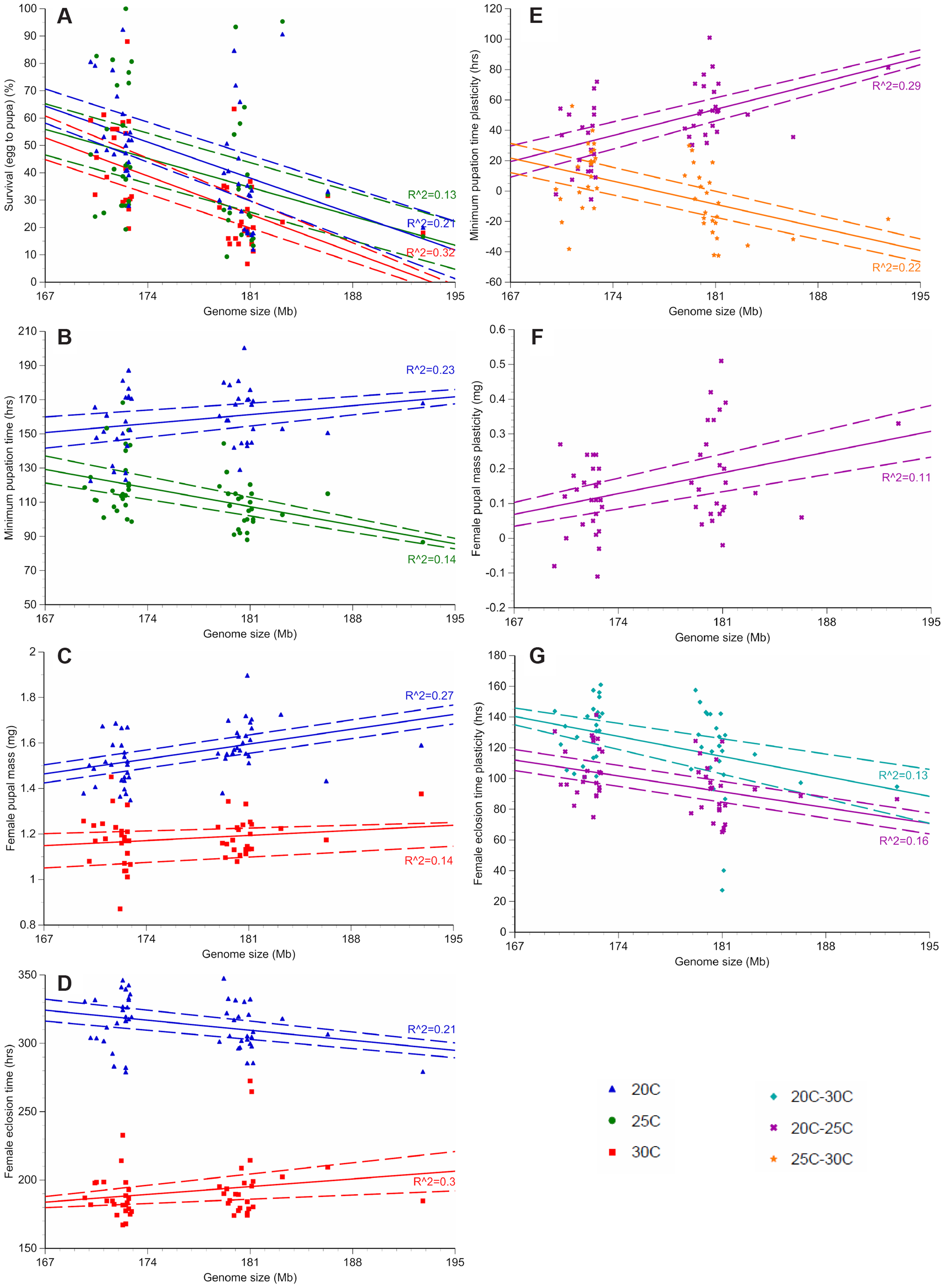 Genome size and temperature affect <i>D. melanogaster</i> development and plasticity.