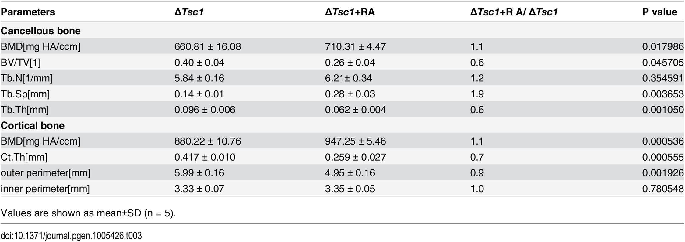 Micro CT analysis of rapamycin-treated ΔTsc1 mice at 10 weeks of age.