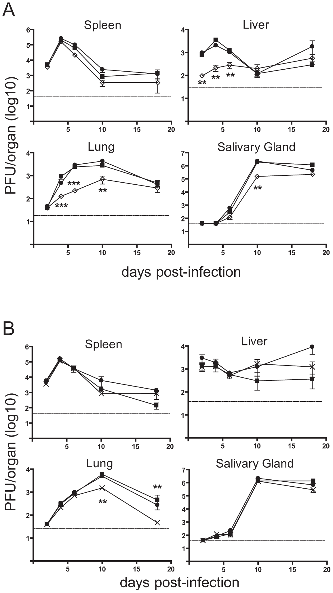 Loss of m41.1 or m41 impairs viral replication <i>in vivo</i>.