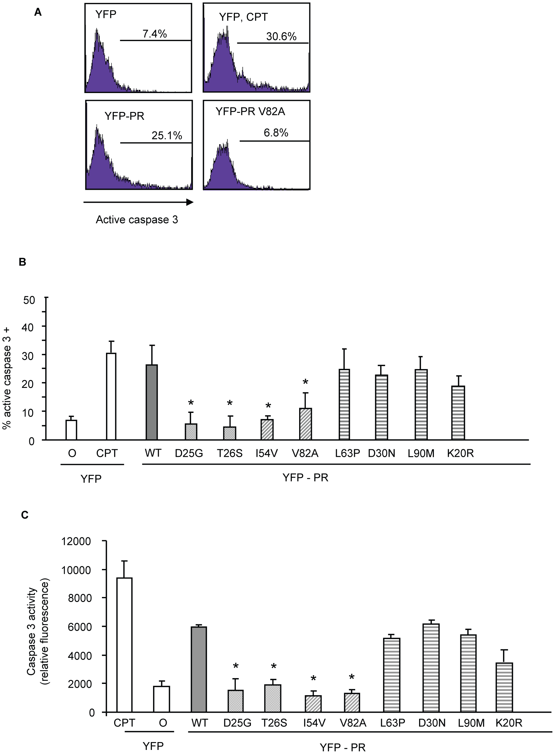 Discordance Associated Mutations (DAMs) within HIV-1PR alters the generation of caspase 3.