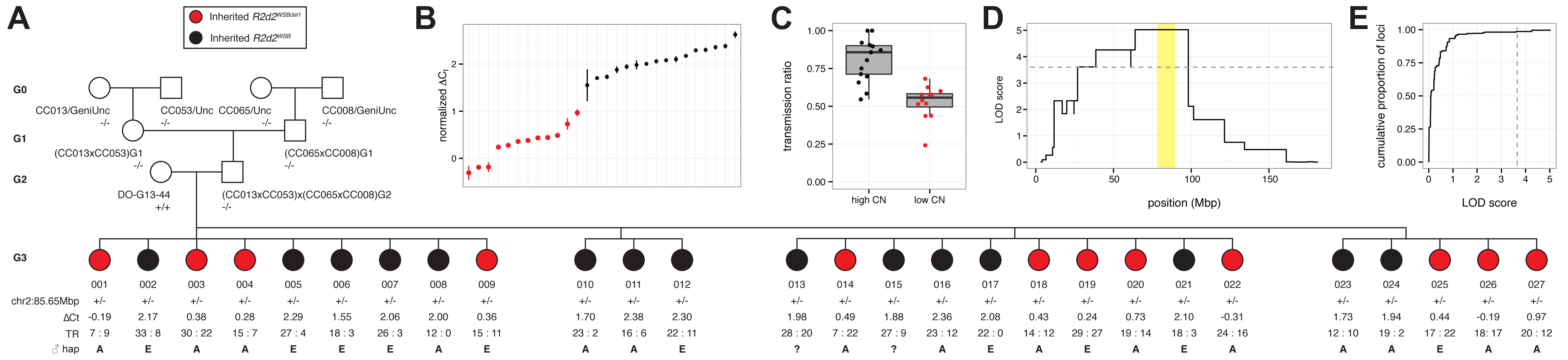 Mapping the causal locus for maternal TRD in a family segregating for a copy-number variant at <i>R2d2</i>.