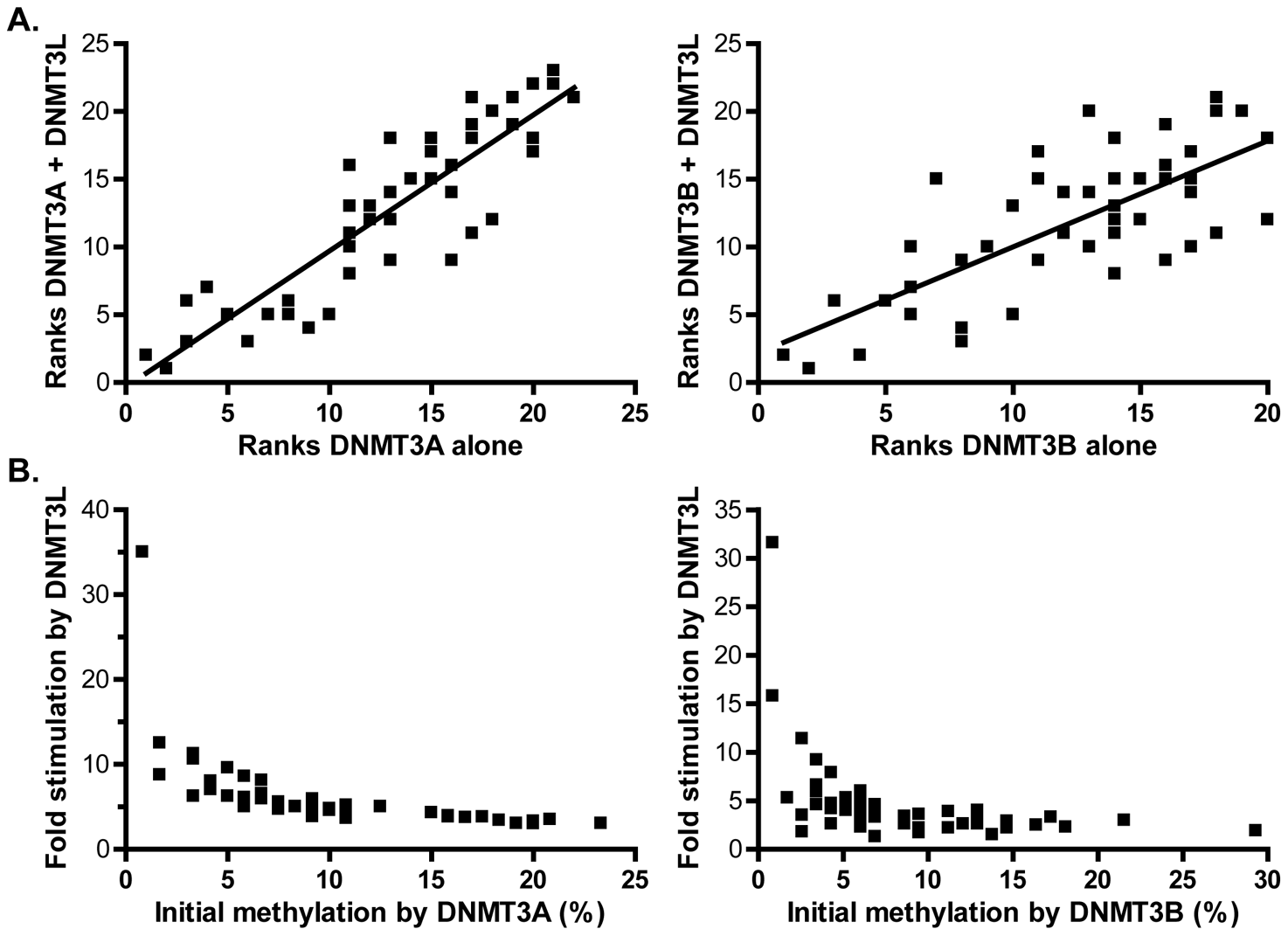 DNMT3L modulates DNA methylation pattern formation by DNMT3A or DNMT3B.