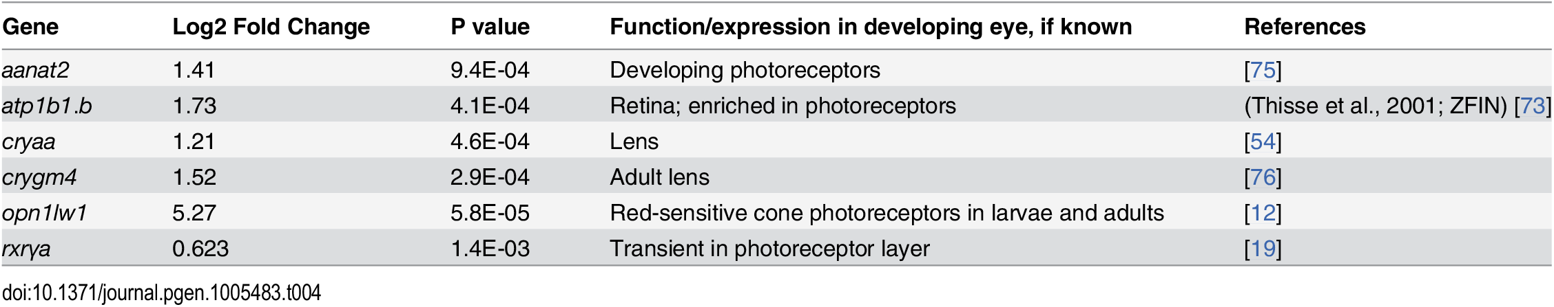 Differential expression of eye and photoreceptor genes in eyes of embryonic zebrafish treated with RA.