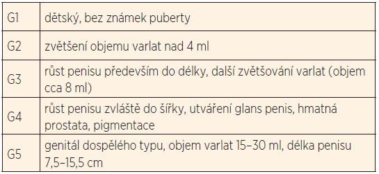 Vývoj genitálu chlapců při normálním průběhu puberty.