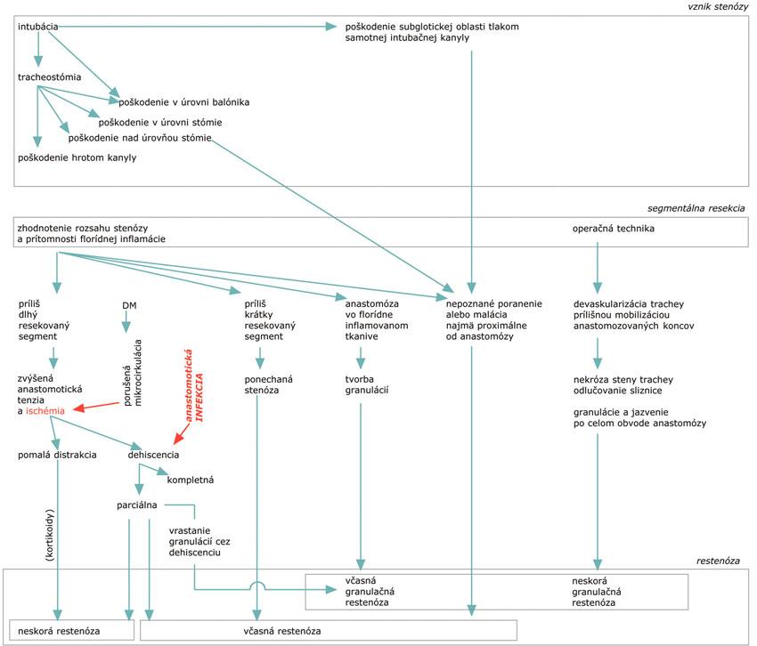 Mechanizmy a faktory vplývajúce na rozvoj poresekčnej restenózy Fig. 2. Mechanisms and factors having impact on the post-resection stenosis