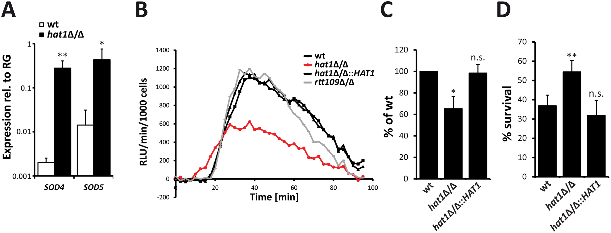 Higher ROS detoxification capacity of <i>hat1</i>Δ/Δ cells causes resistance to neutrophil killing.