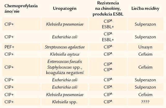 Prehľad chinolón-rezistentných uropatogénov izolovaných počas 12 mesiacov chemoprofylaxie a imunoterapie.