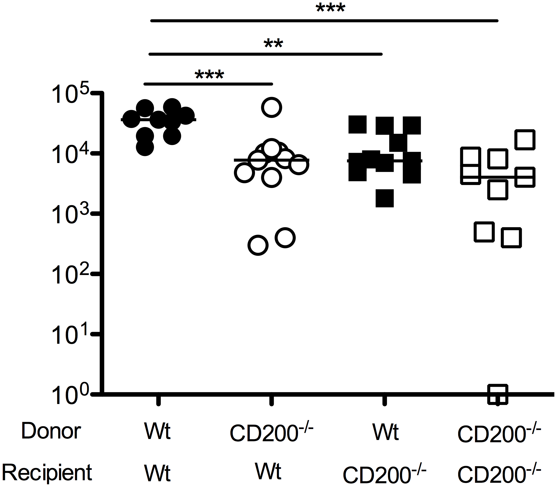 CD200 expressed by hematopoietic and non-hematopoietic cells facilitate MCMV persistence.