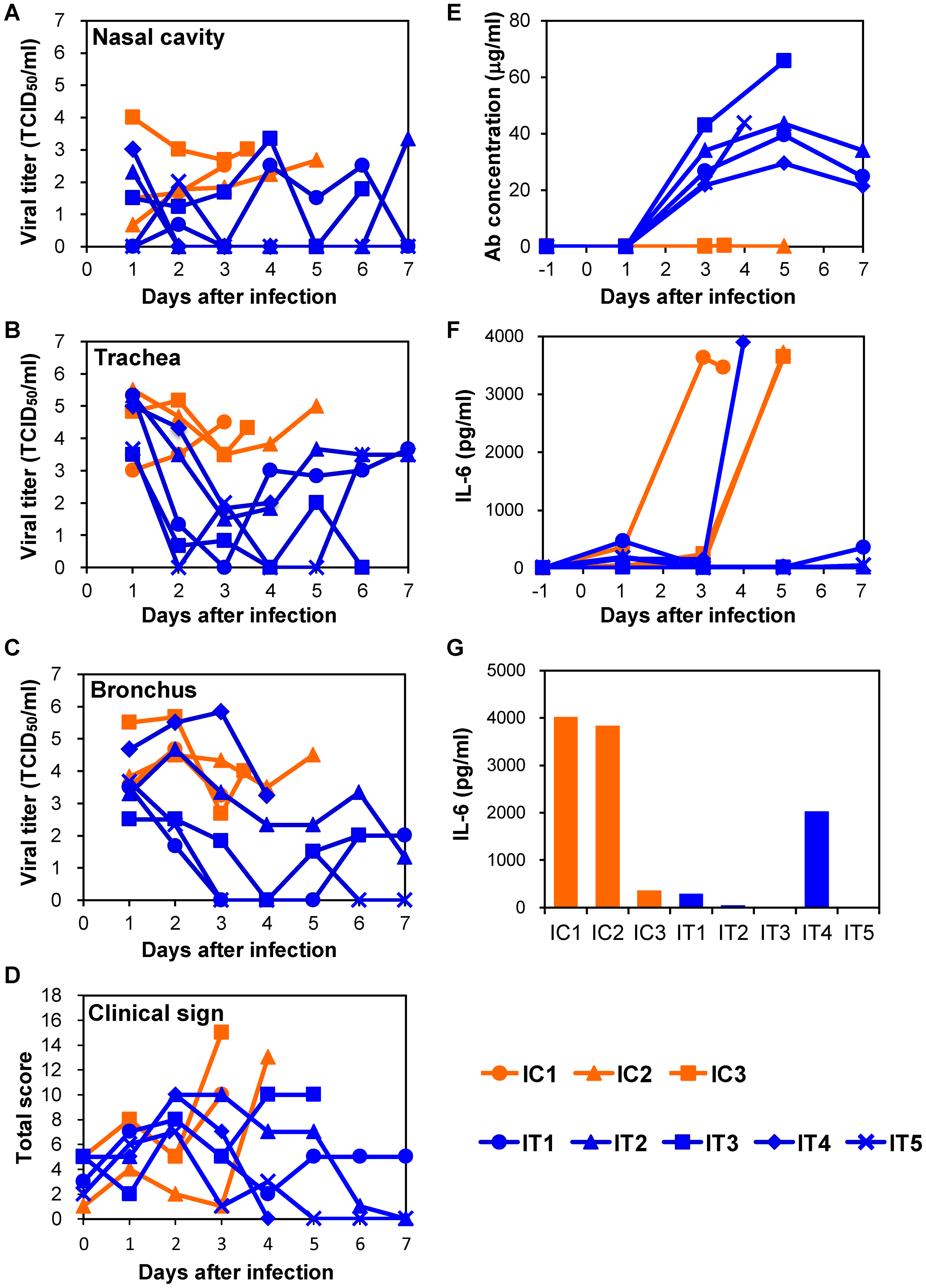 Protection of immunocompromised macaques treated with MAb ch61 from VN3040 infection.