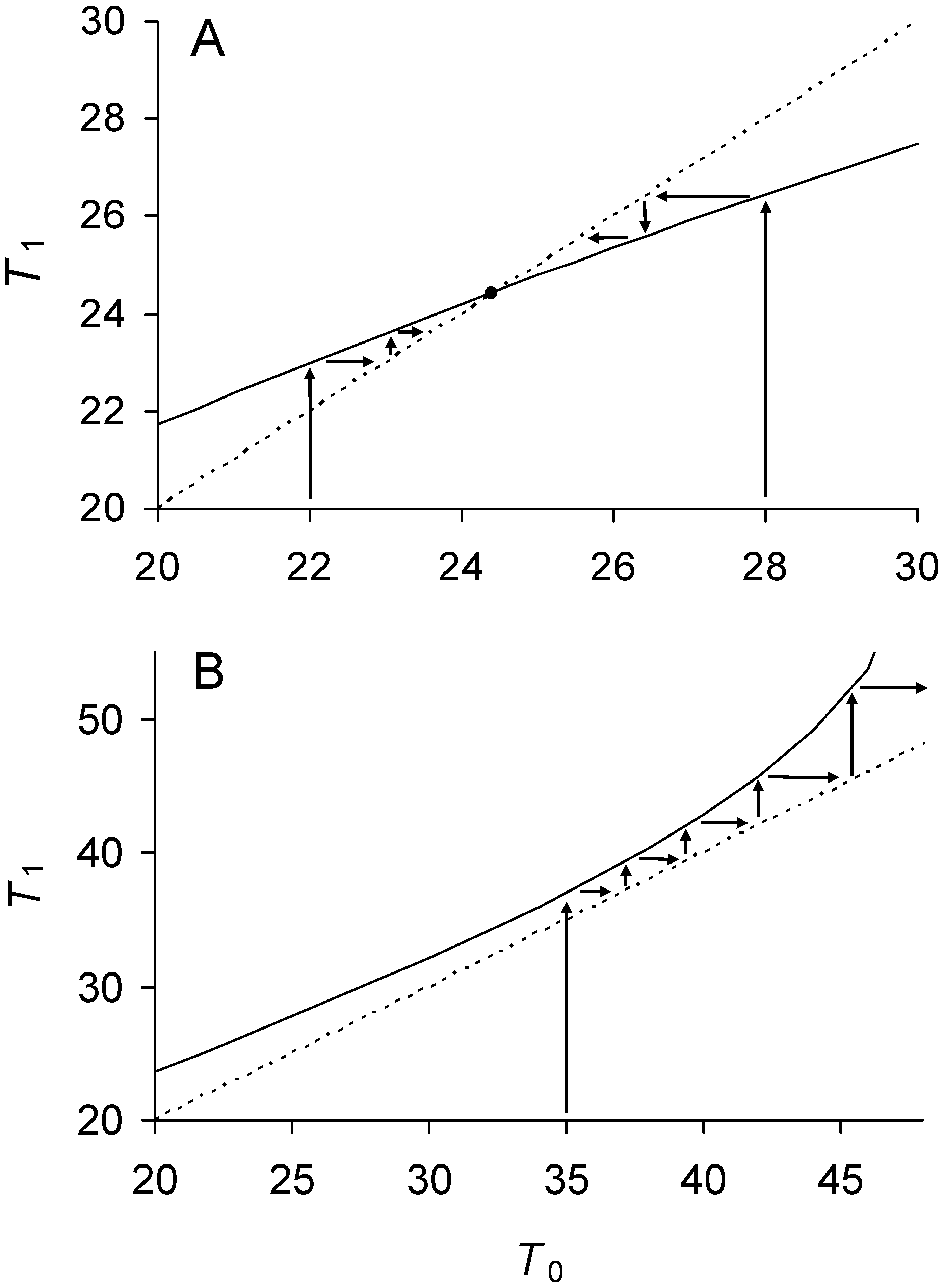 Phase plot of relationship between doubling times of daughter and mother cells when division is symmetrical.