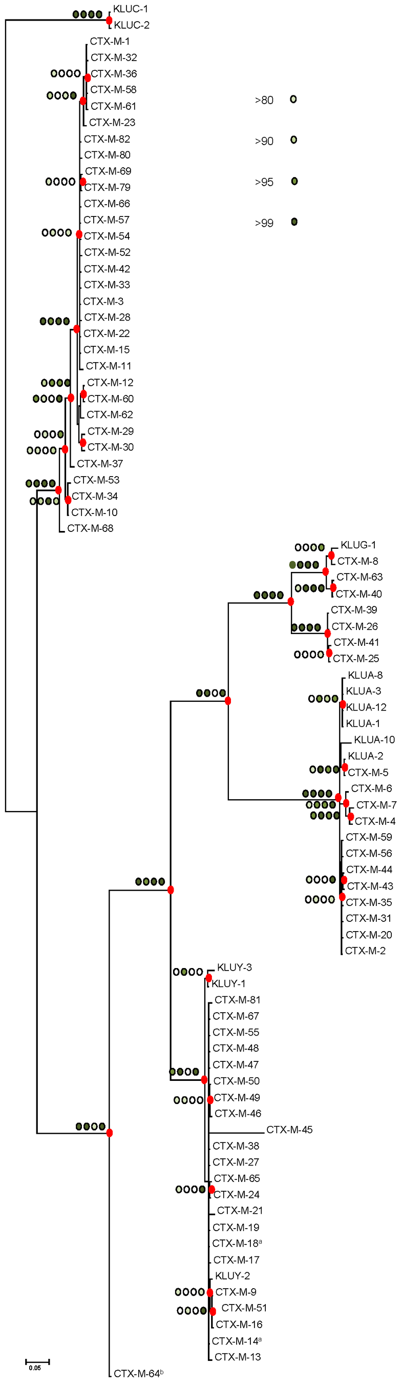 Phylogenetic tree of <i>bla</i><sub>CTX-M</sub> sequences (n=73) inferred by Bayesian analysis.