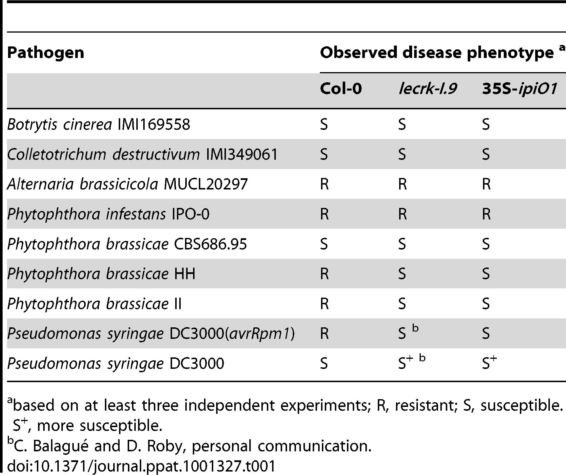 Gain of susceptibility to <i>Phytophthora brassicae</i> in Arabidopsis Col-0, <i>lecrk-I.9</i> and 35S-<i>ipiO1</i> lines.
