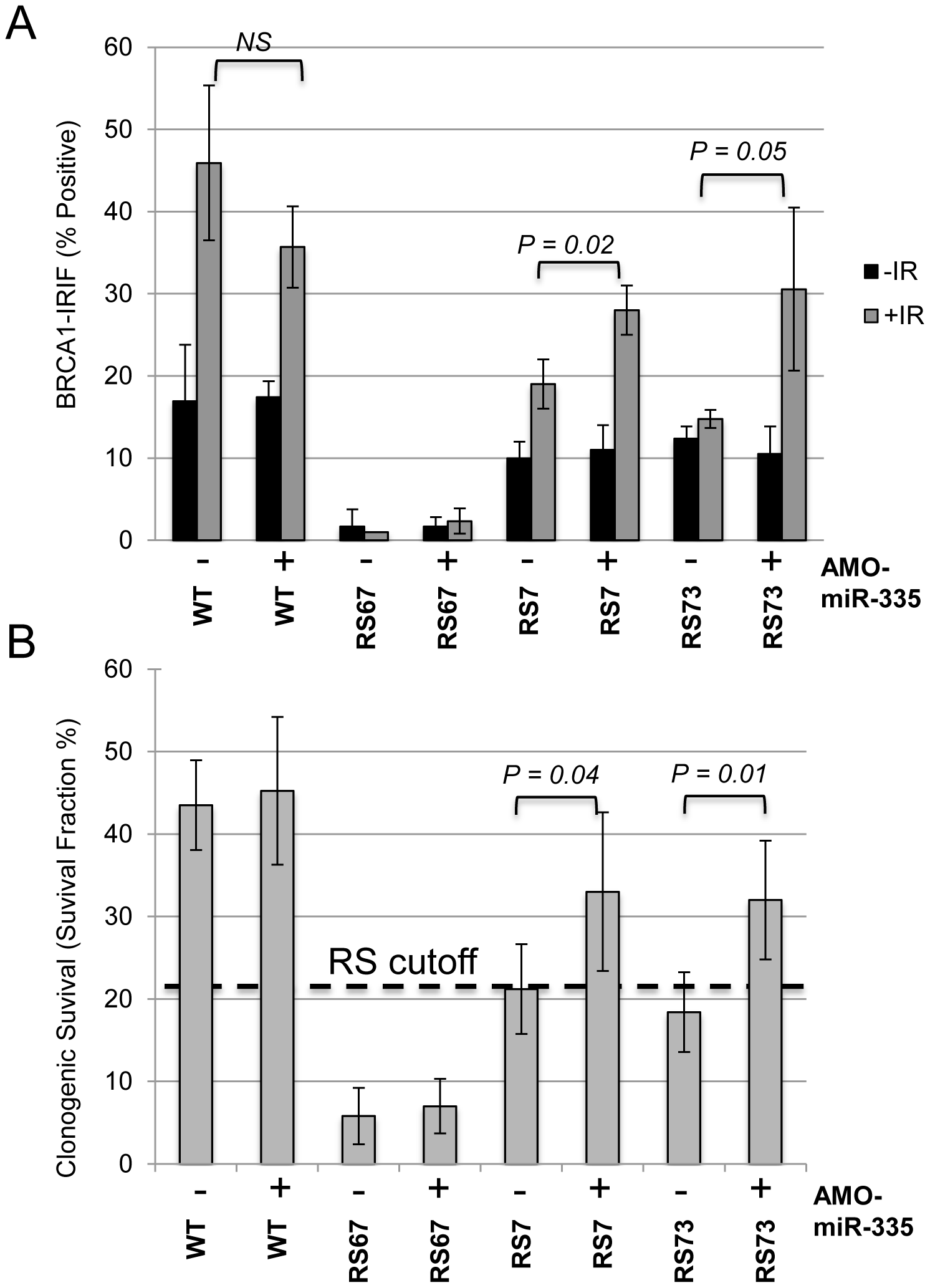 MiR335-induced DDR defects were abrogated in RS7 and RS73 after AMO-miR-335 treatment.