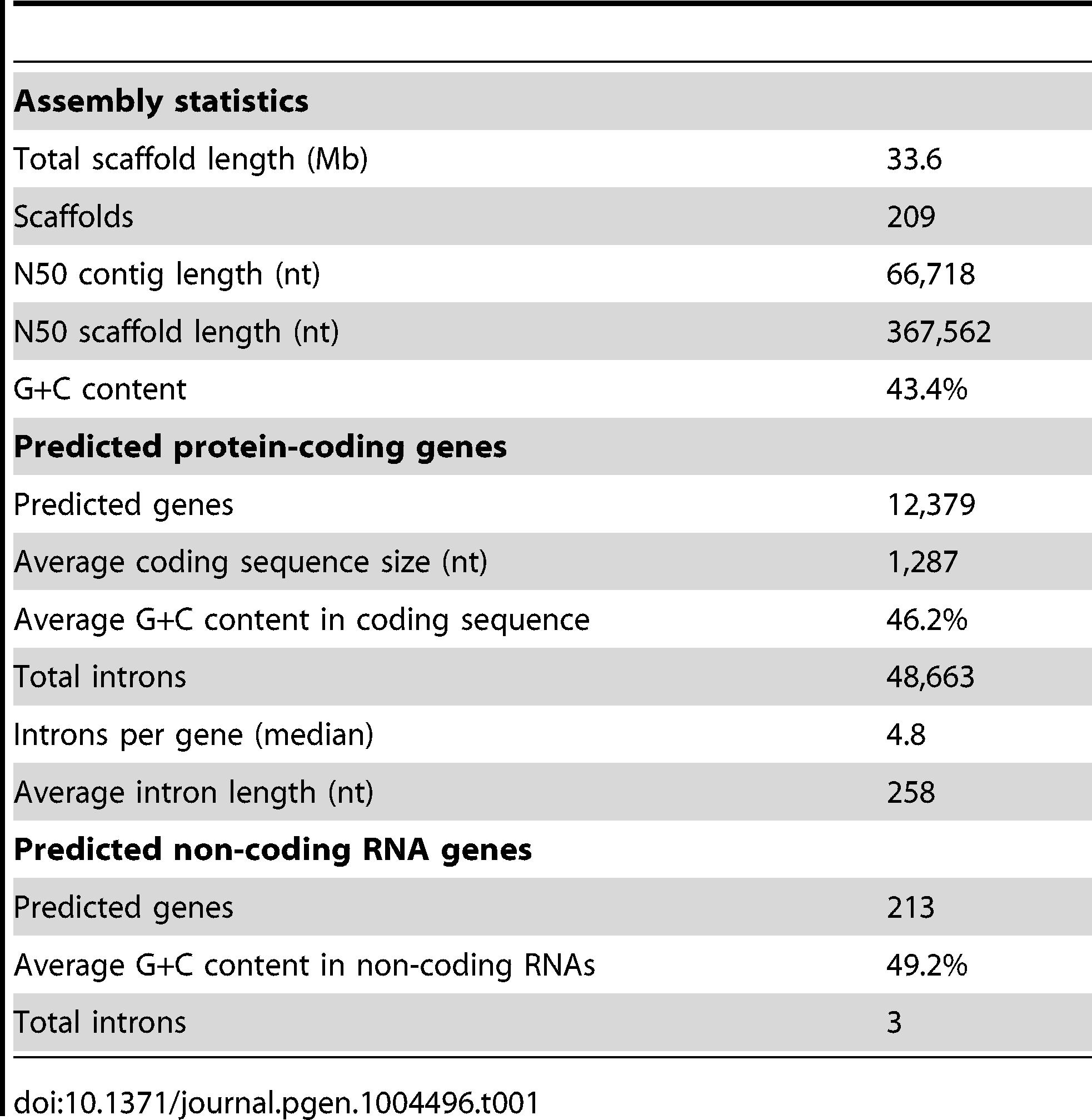 Statistics of the <i>L. corymbifera</i> genome.