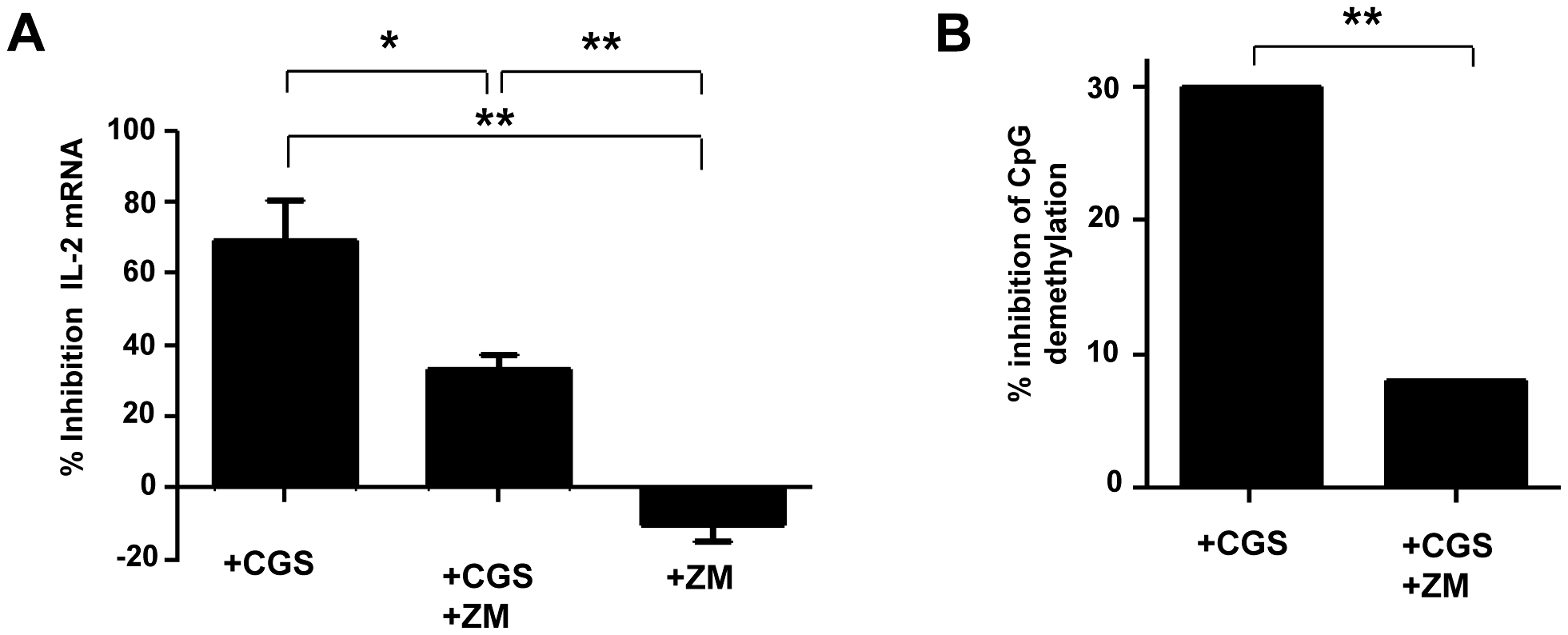 Inhibition of IL-2 production by A2AR induced signals during the activation of naive TCD4+ lymphocytes.