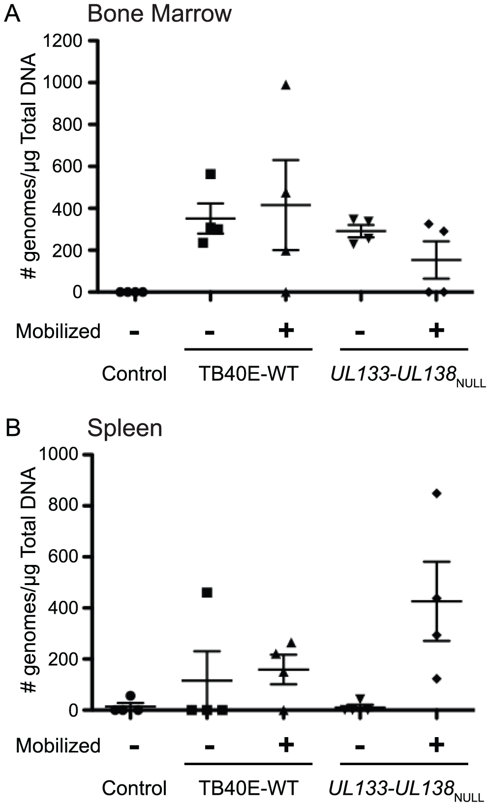 Analysis of <i>UL133-UL138</i><sub>NULL</sub> infection in humanized mice.