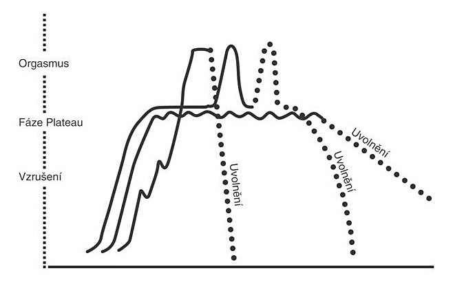 Křivka cyklu ženské sexuální aktivity (zdroj: Masters, W., Johnson, V. Human sexual response. Boston: Little, Brown Co, 1966)