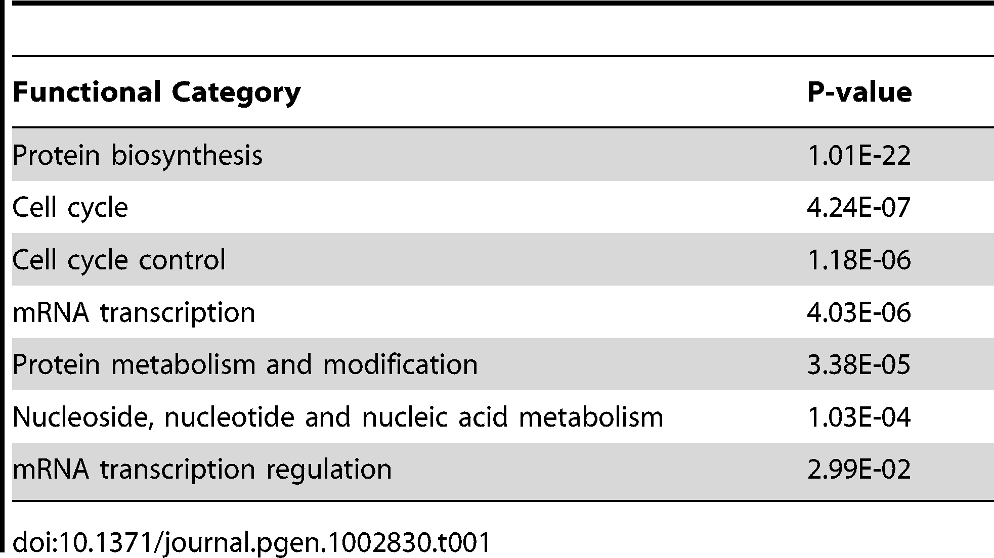 Gene ontology categories that were enriched in the genome-wide RNAi screen.