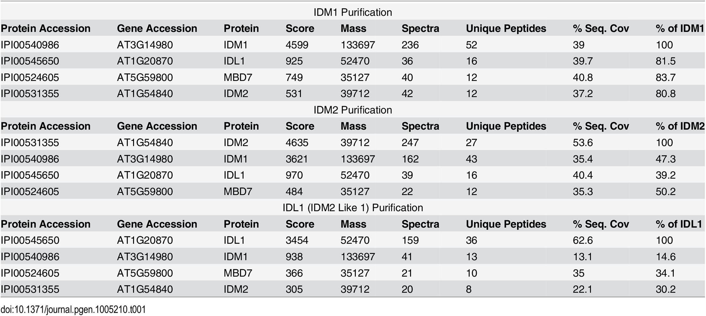 Mass-spectrometric analysis of IDM1, IDM2 and IDL1 co-purifying proteins.