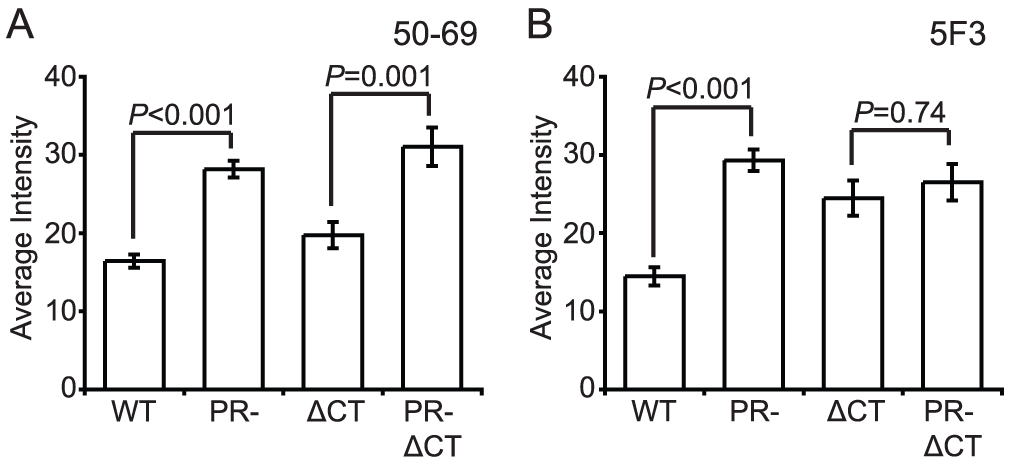 Antibody binding to non-neutralizing gp41 epitopes on HIV-1 virions.