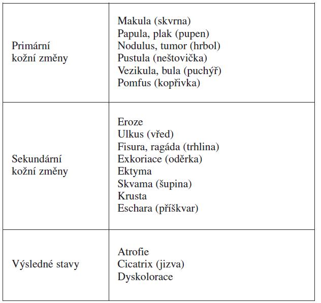 Terminologie kožních eflorescencí