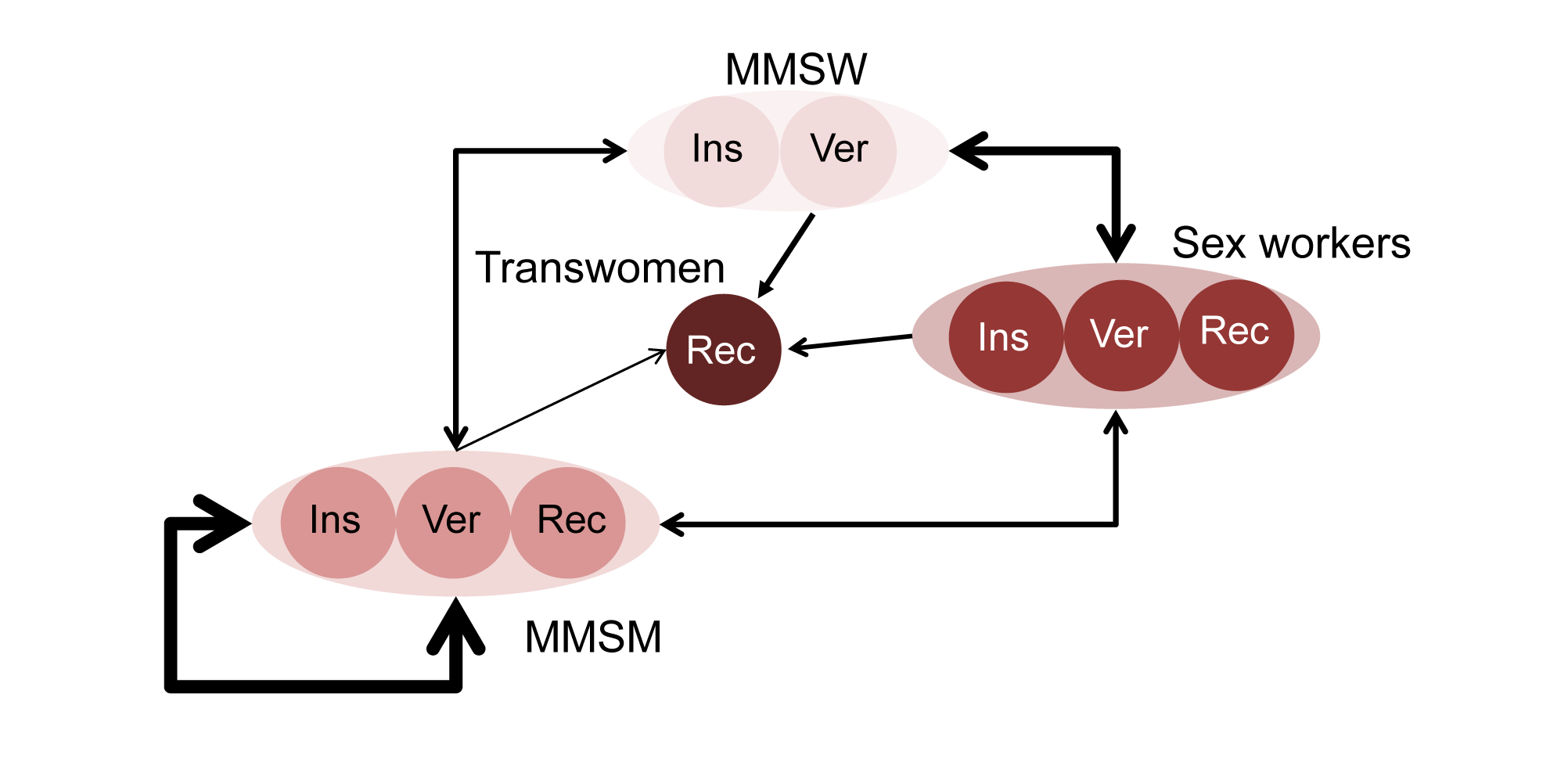 Model representation of sexual mixing and sexual positioning among MSM and transwomen.