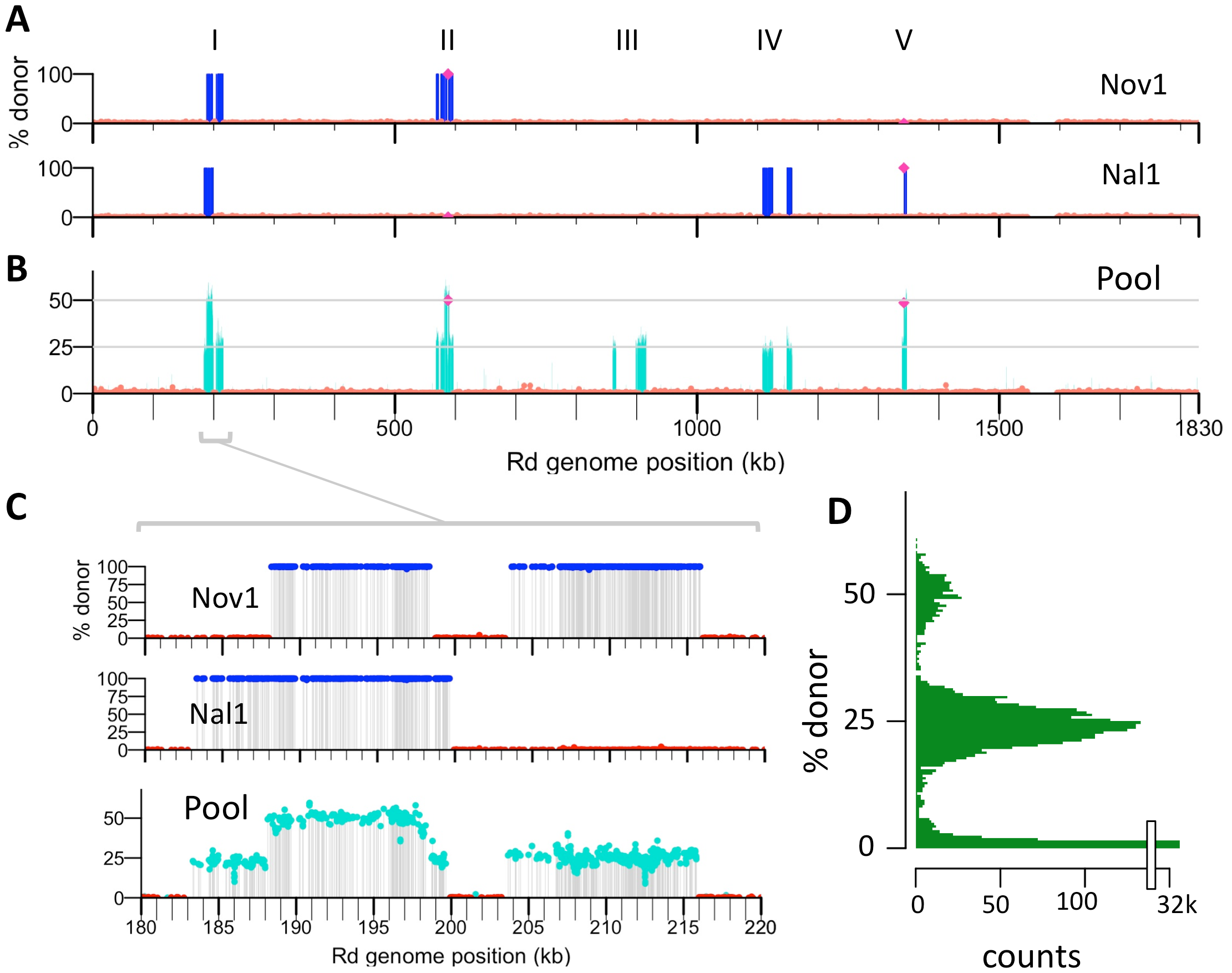Identifying transformation events genome-wide.
