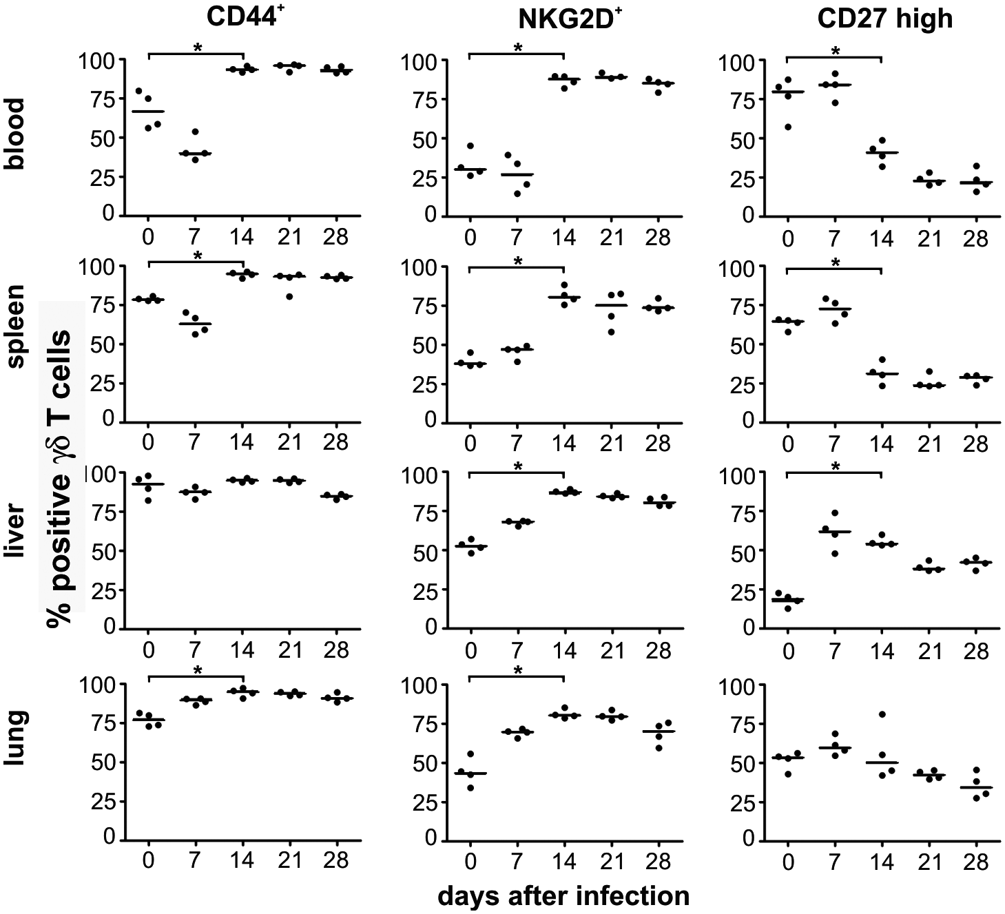 Phenotypical changes of γδ T cells after infection.