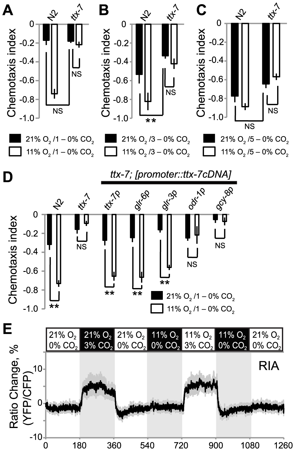 TTX-7 acts in RIA interneurons to promote CO<sub>2</sub> avoidance when ambient O<sub>2</sub> levels are low.
