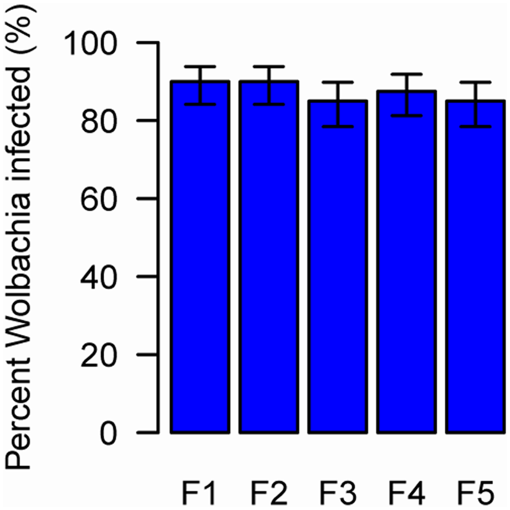 The prevalence of newly-acquired <i>Wolbachia</i> in AsiaII7 whitefly over five generations.