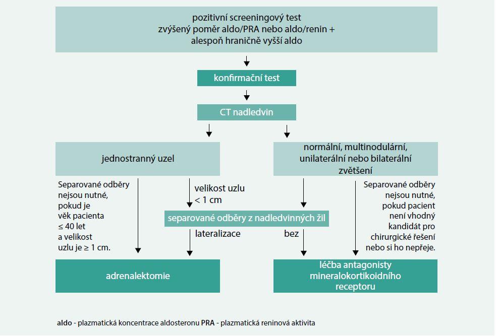 Algoritmus diagnostického a terapeutického přístupu u primárního hyperaldosteronzimu. Upraveno podle [12]