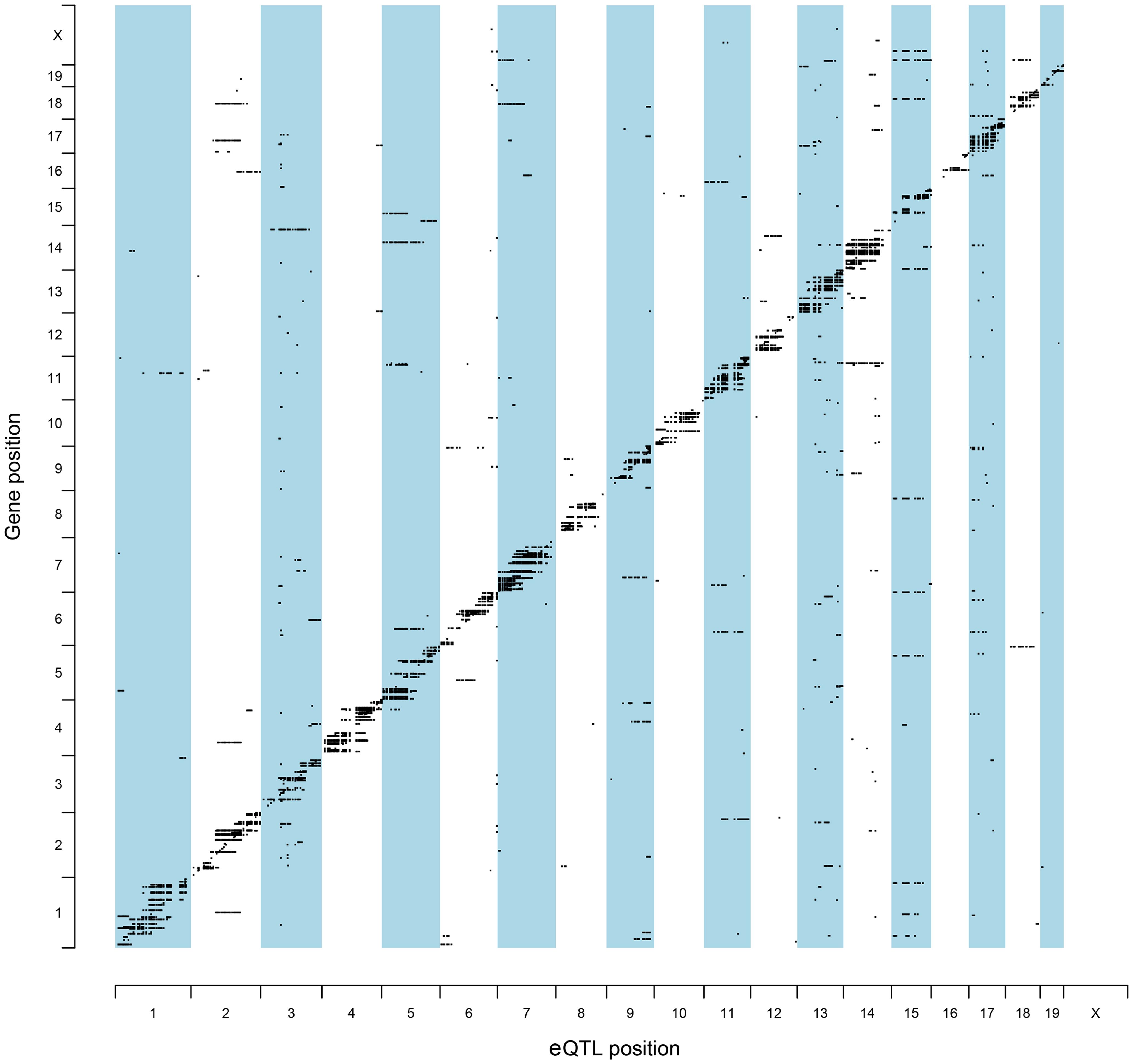 Genomic locations of eQTLs relative to their cognate transcript.