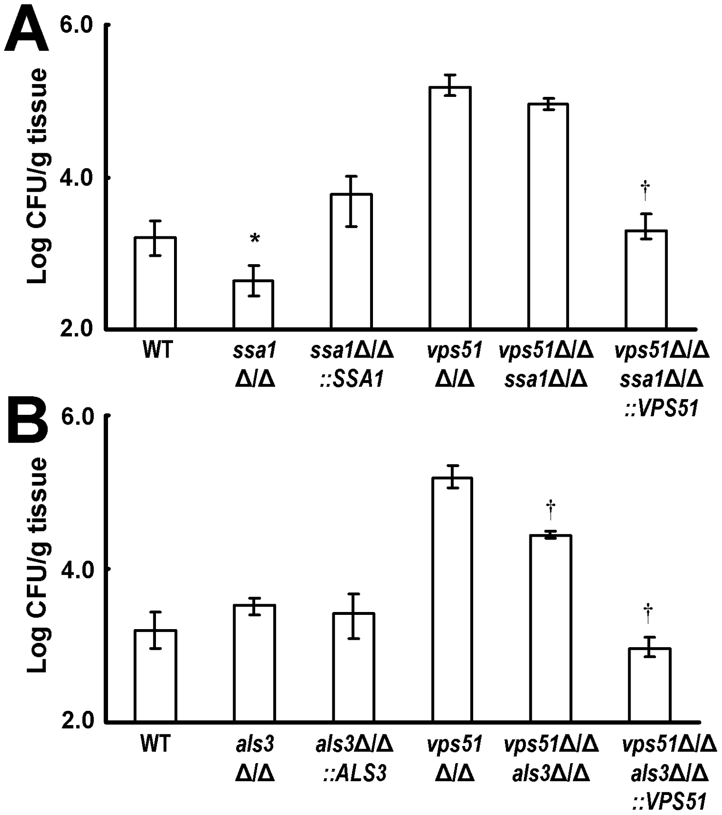 Deletion of <i>SSA1</i> and <i>ALS3</i> have different effects on brain fungal burden.