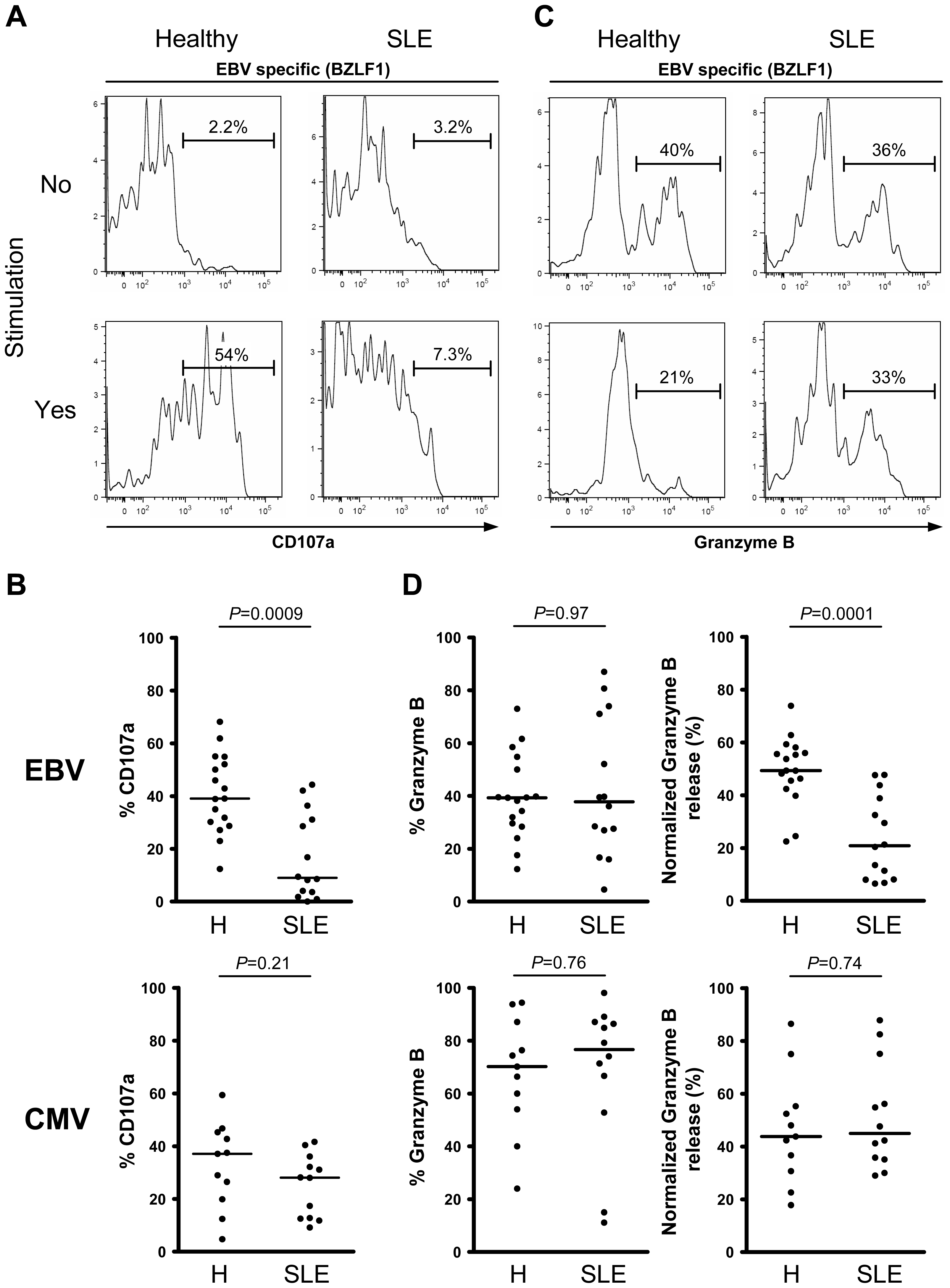 Lytic EBV antigen-specific T cells from SLE patients are impaired in their ability to release their cytotoxic granule content.
