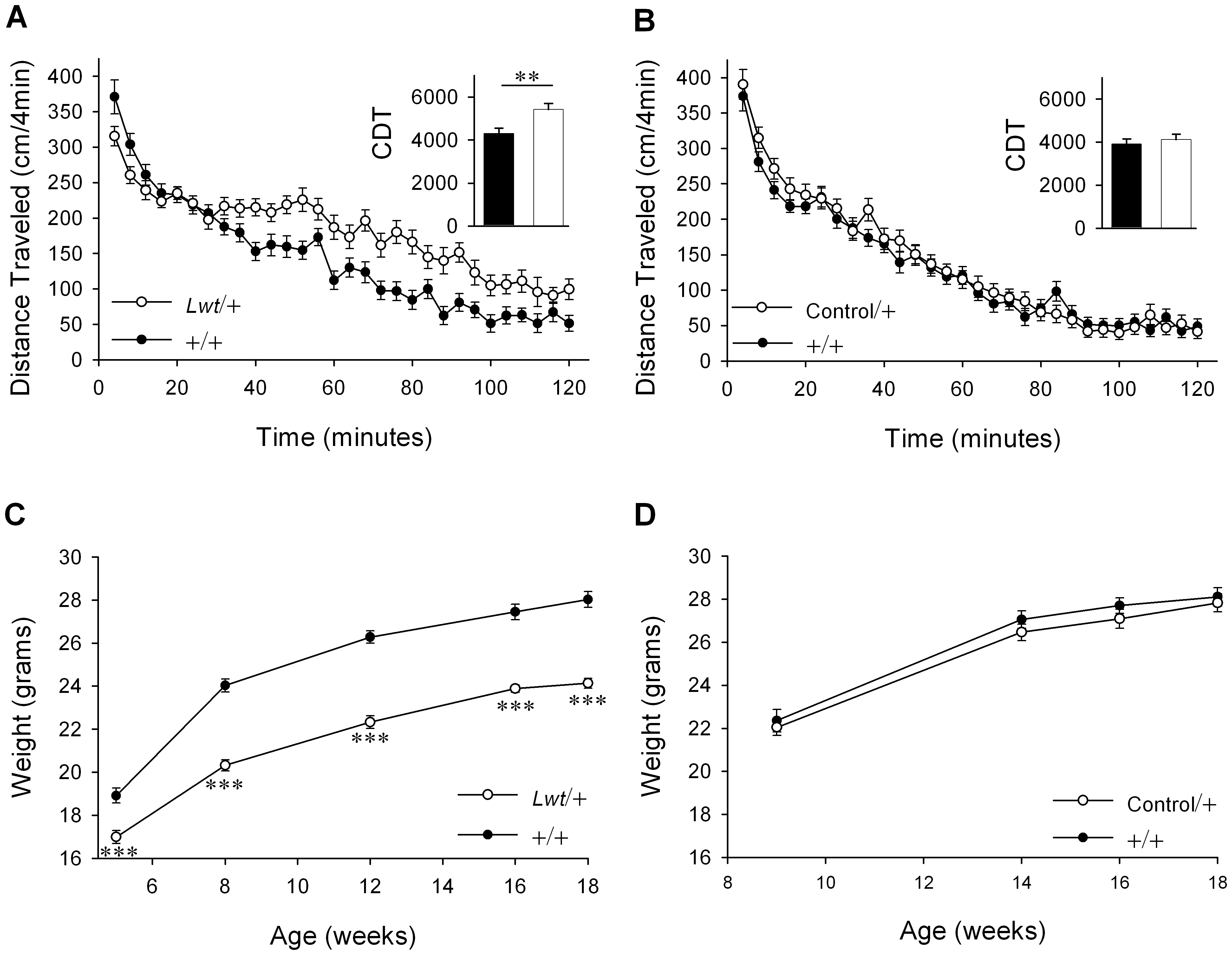 B6.D2-<i>Unc-79<sup>Lwt</sup></i> (<i>Lwt</i>) congenic strain captures locomotor and body weight phenotypes.