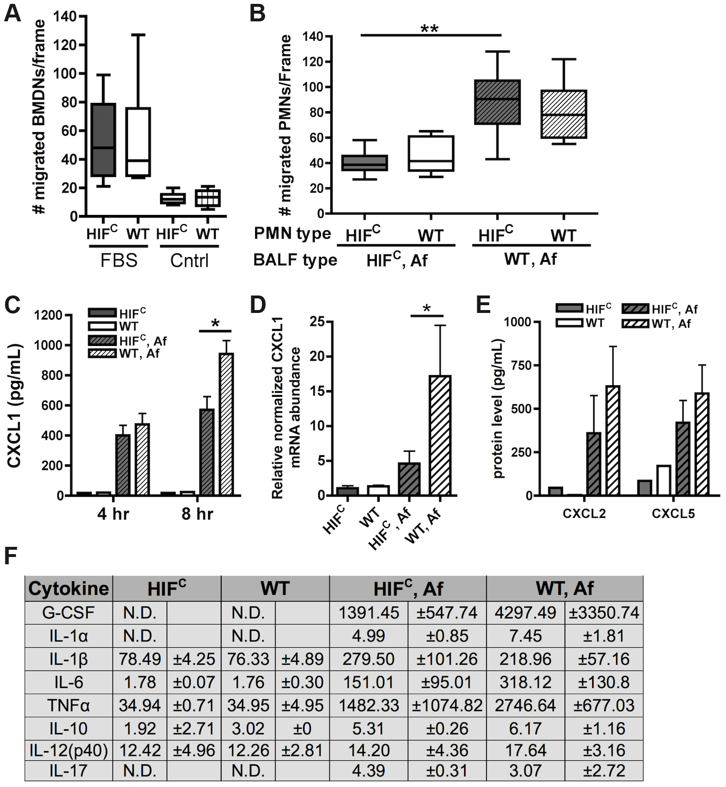 Decreased neutrophil levels in HIF<sup>C</sup> mice correlates to decreased production of CXCL1 and not migration defects.