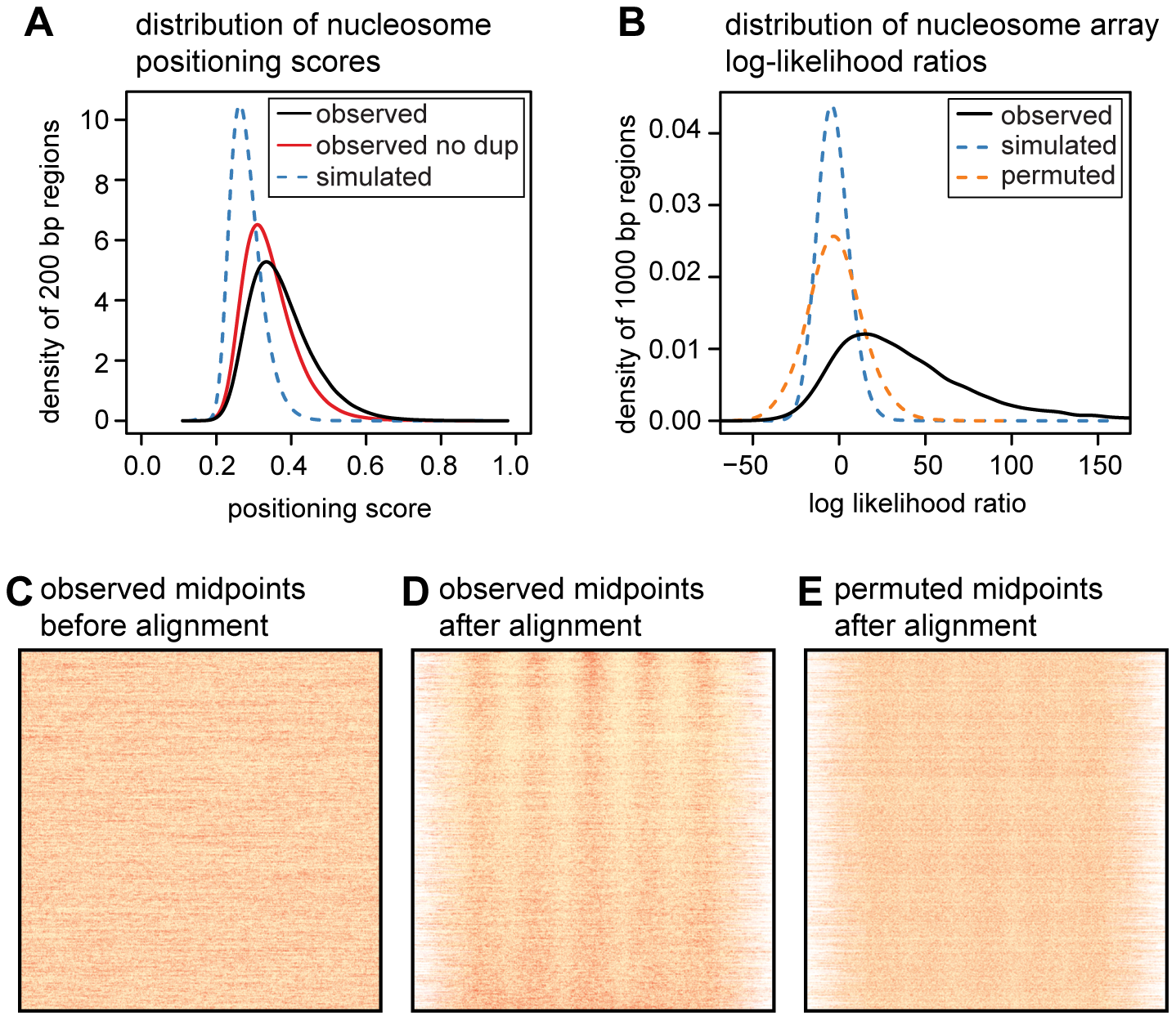 Quantifying translational nucleosome positioning in the human genome.