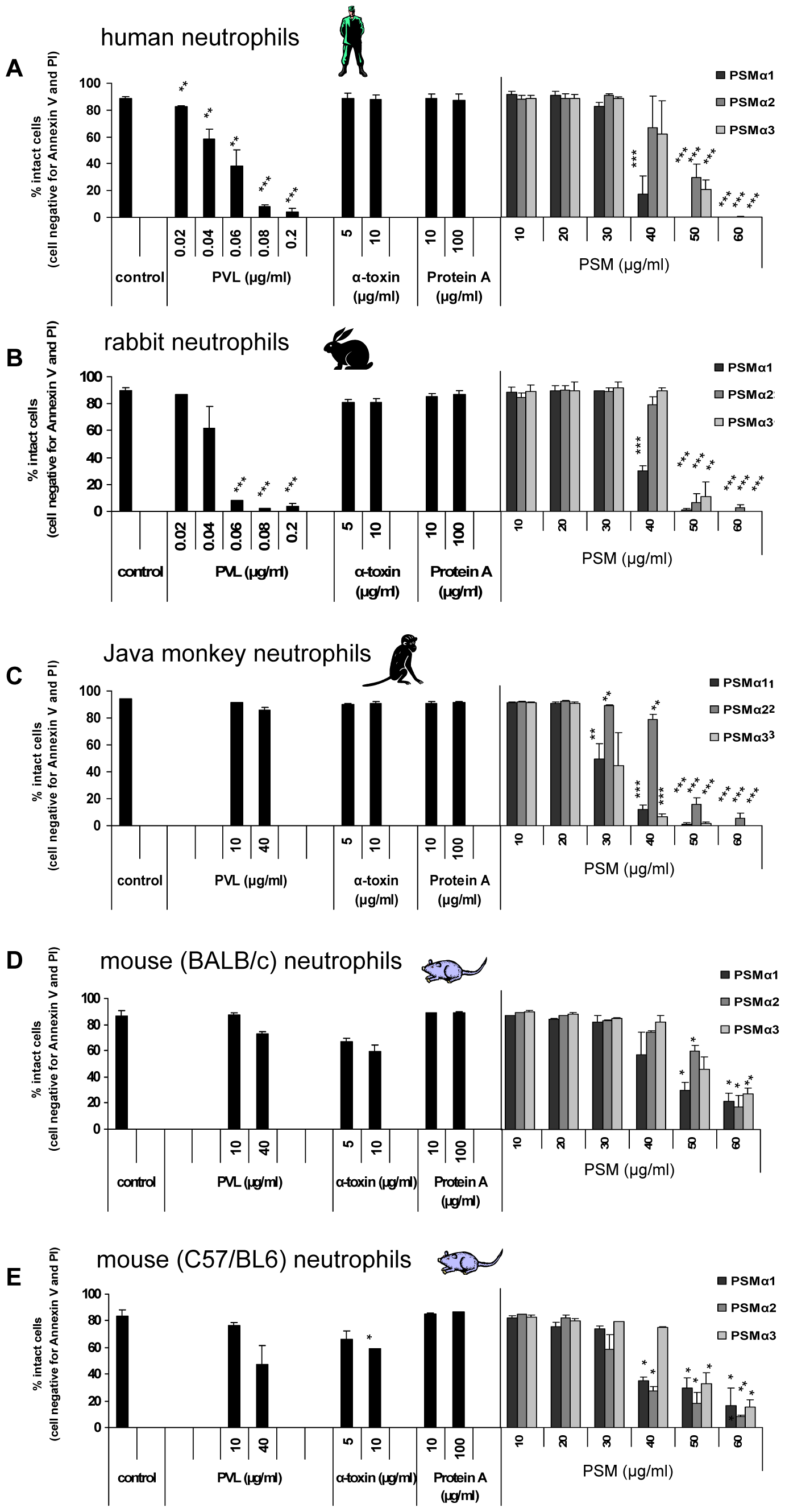 The cytolytic effect of purified <i>S.aureus</i> virulence factors on neutrophils from different species.