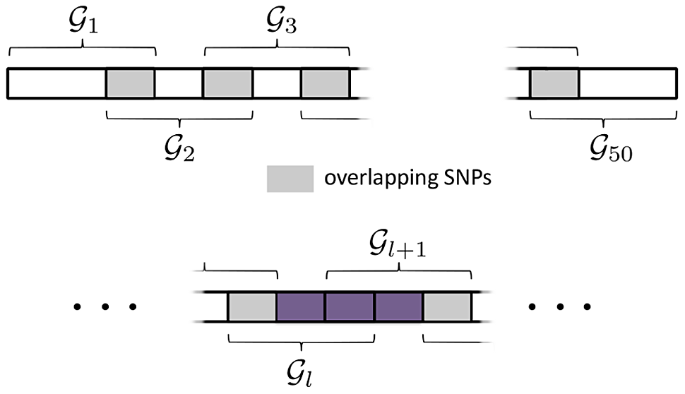 SGL Simulation Study with overlapping pathways.