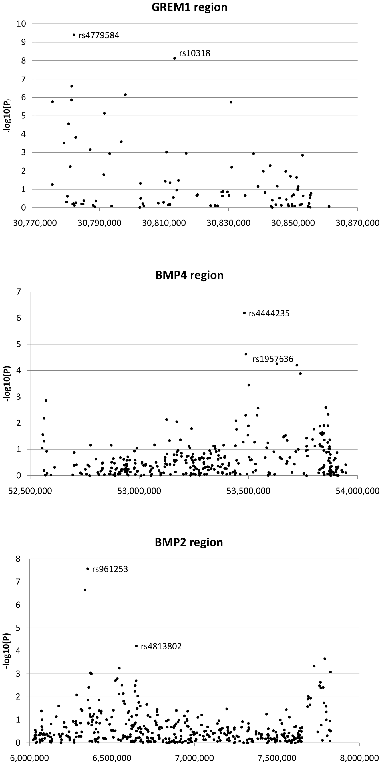 Search for additional colorectal cancer susceptibility SNPs near <i>GREM1</i>, <i>BMP4</i>, and <i>BMP2</i>.