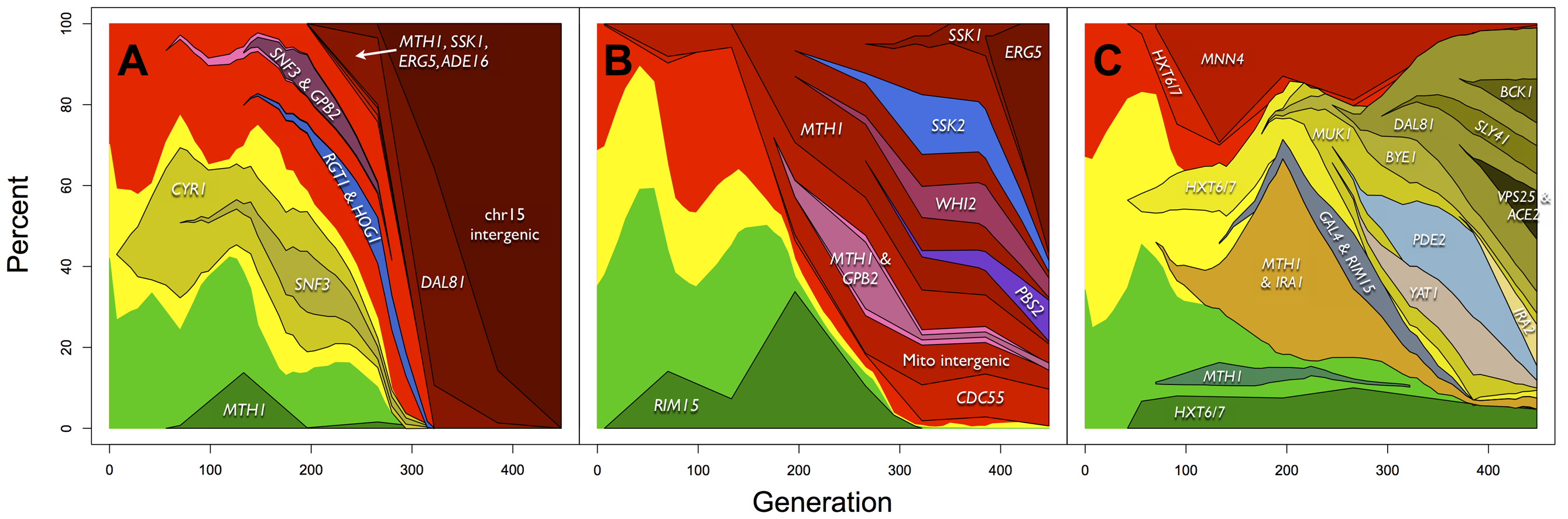 Dynamics and linkage of mutations above 10% allele frequency in (A) E1, (B) E2 and (C) E3.