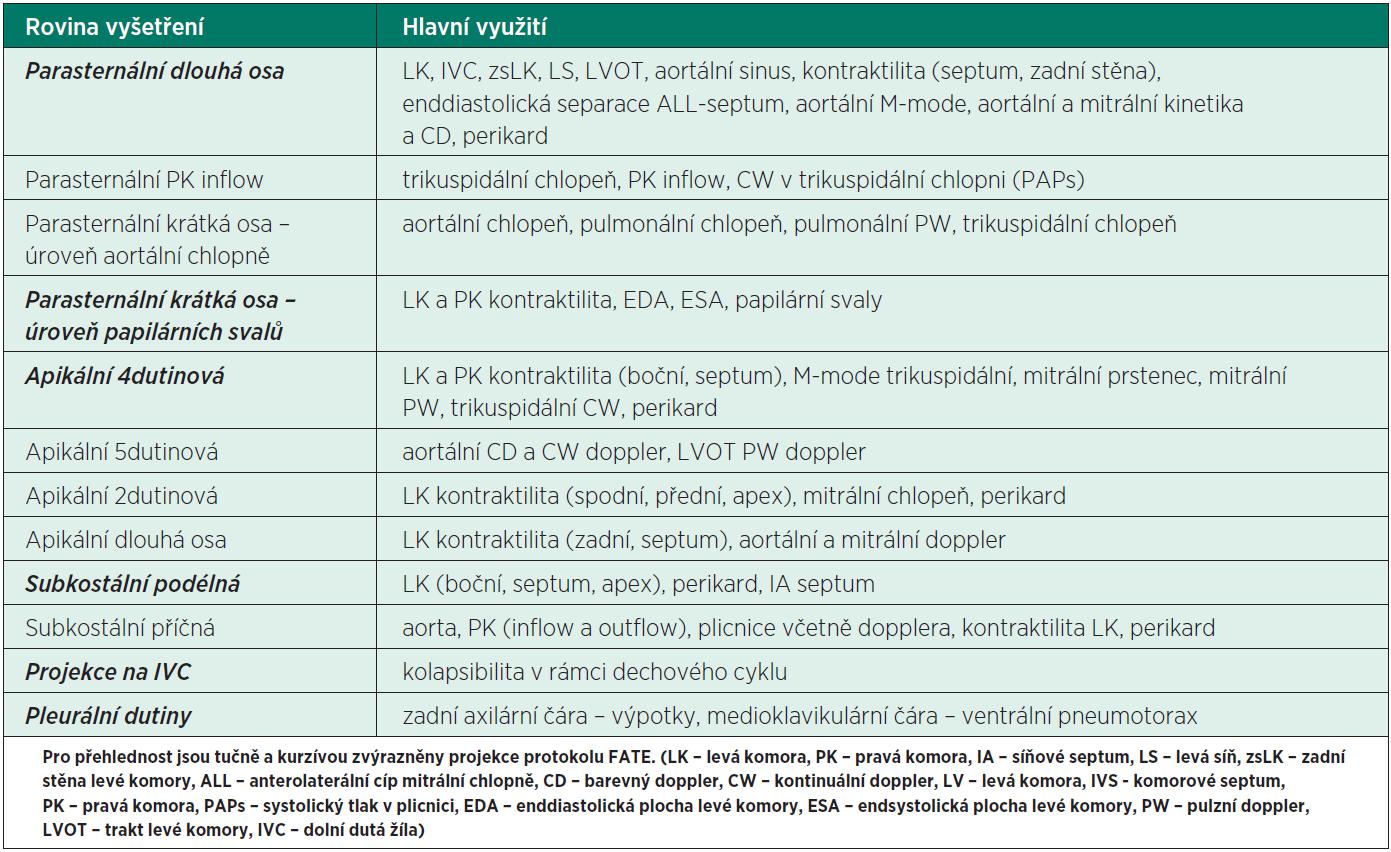 Přehled základních projekcí aplikovaných v rutinním transtorakálním echokardiografickém vyšetření kriticky nemocného